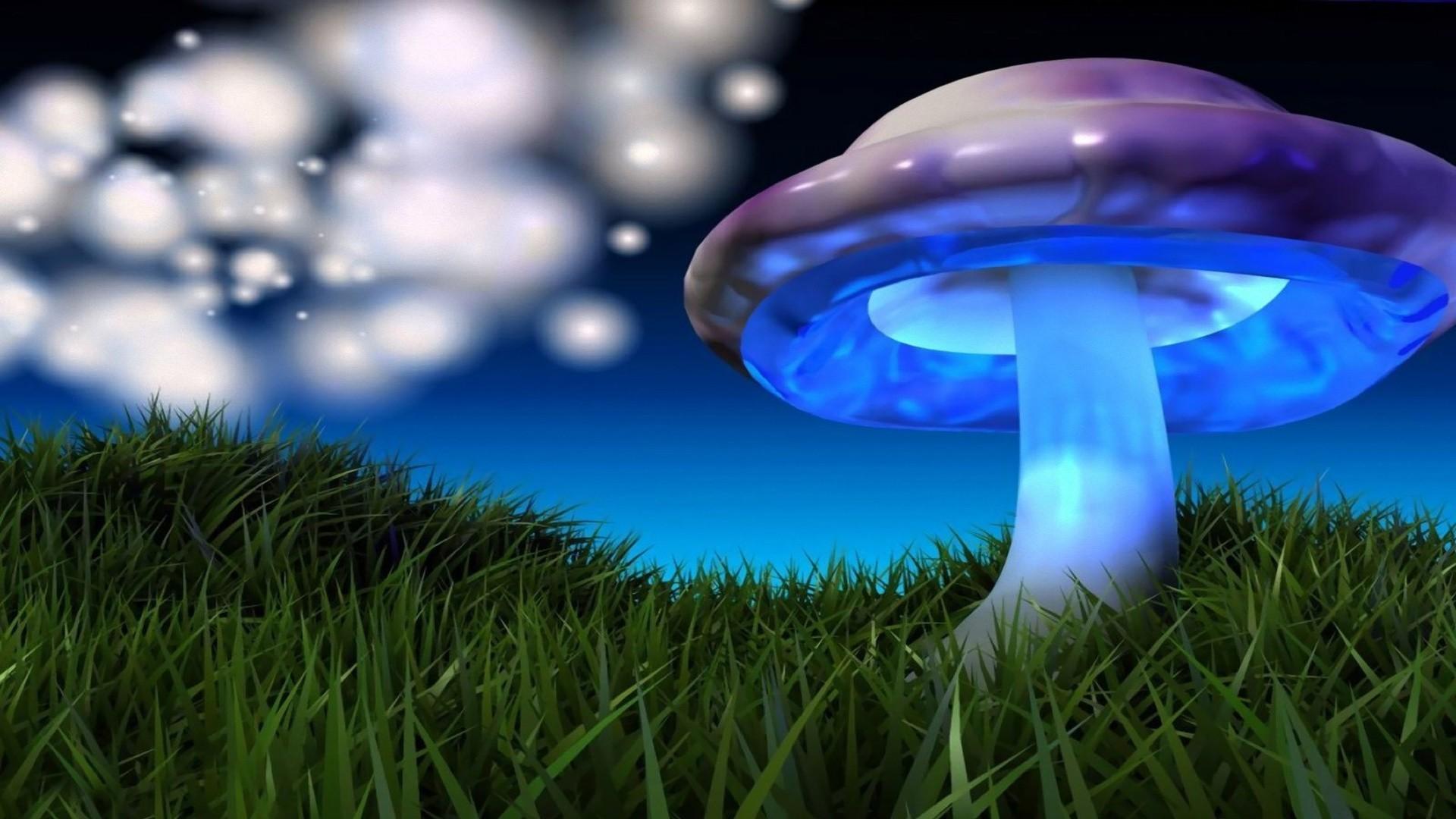3D Mushroom Wallpaper (55+ Images