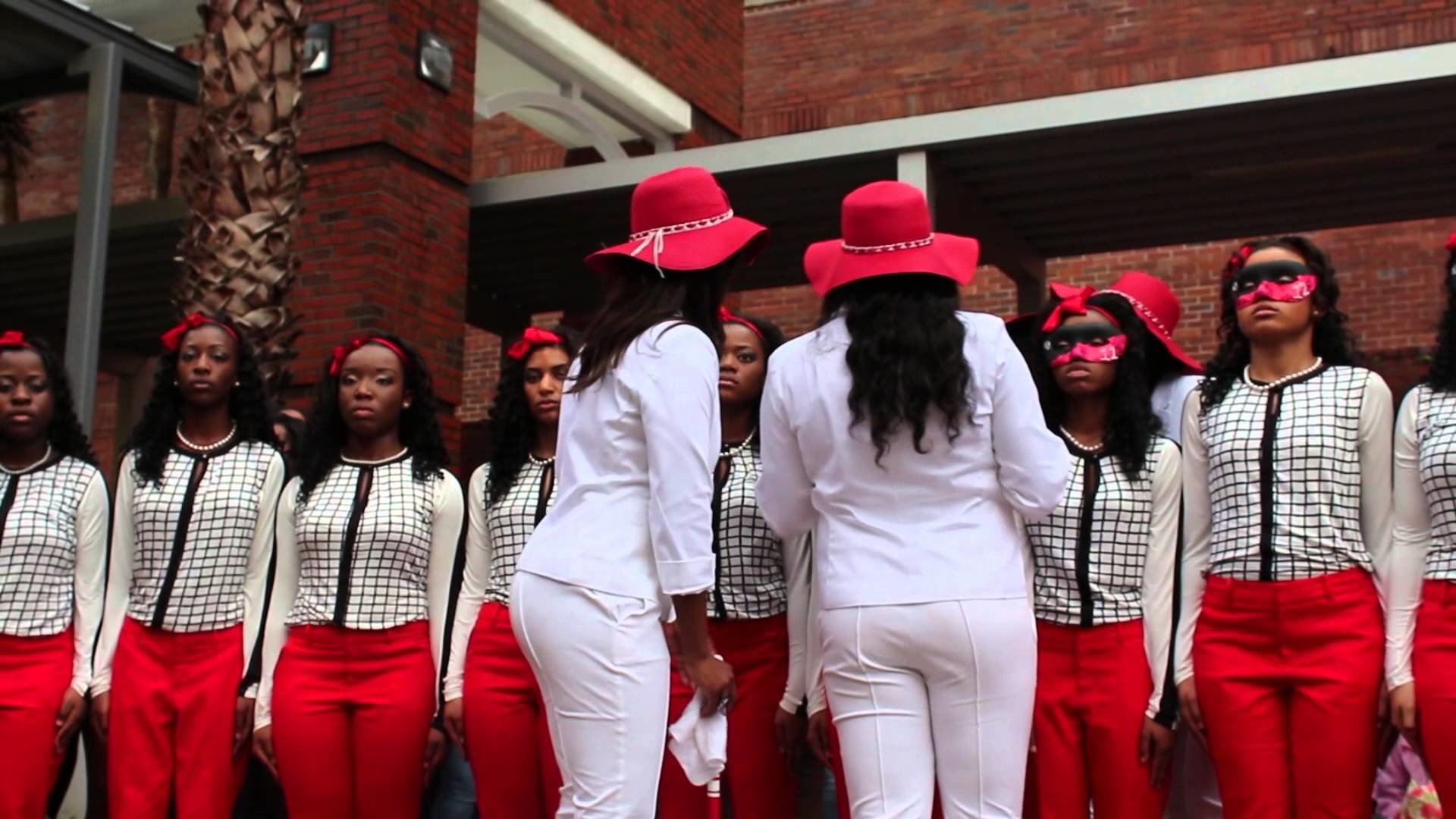 Delta sigma theta wallpaper 60 images 1920x1080 lambda psi chapter of delta sigma theta sorority inc spring 2014 probate buycottarizona Choice Image