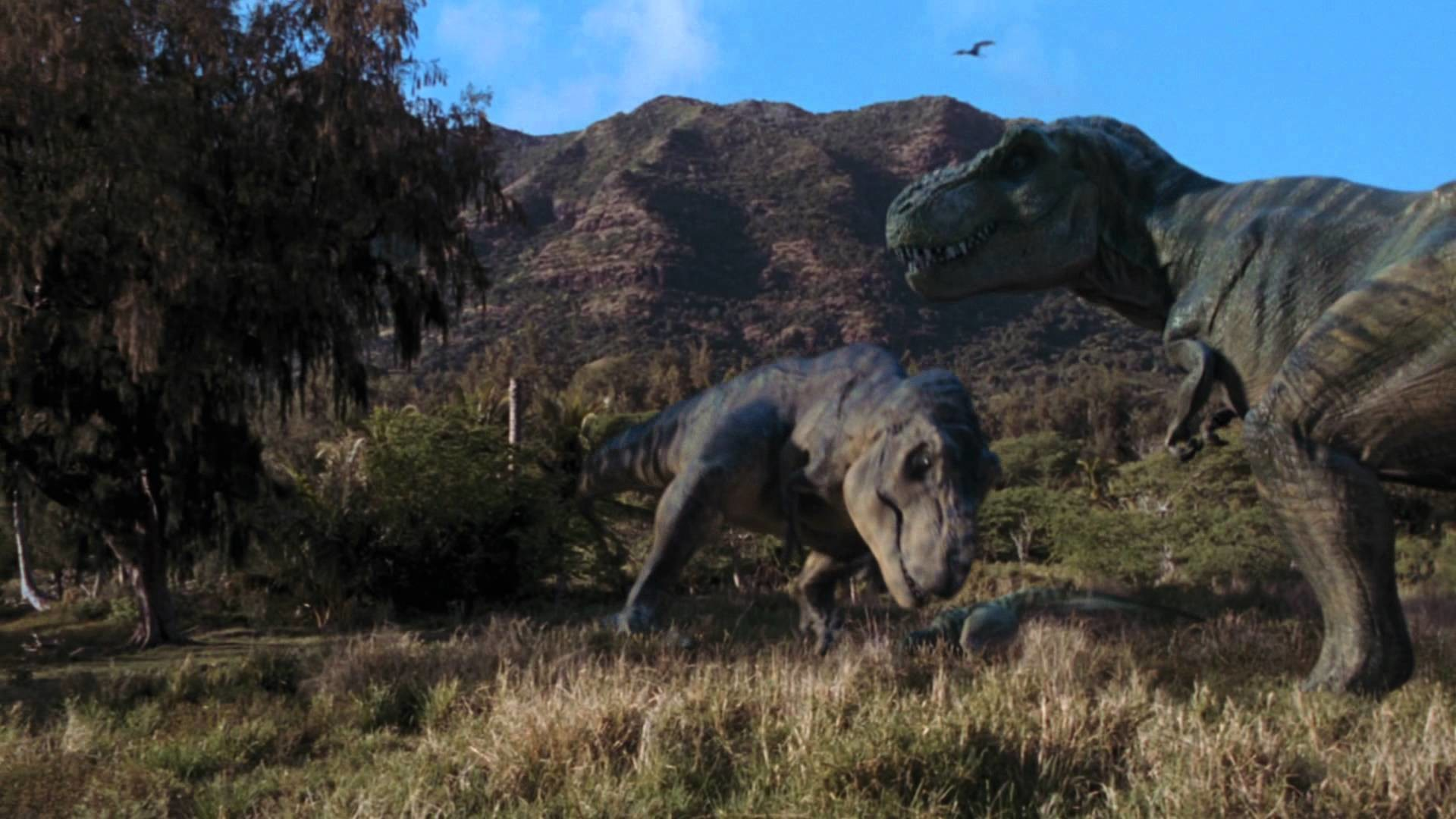 dinosaur hd wallpaper impremedianet