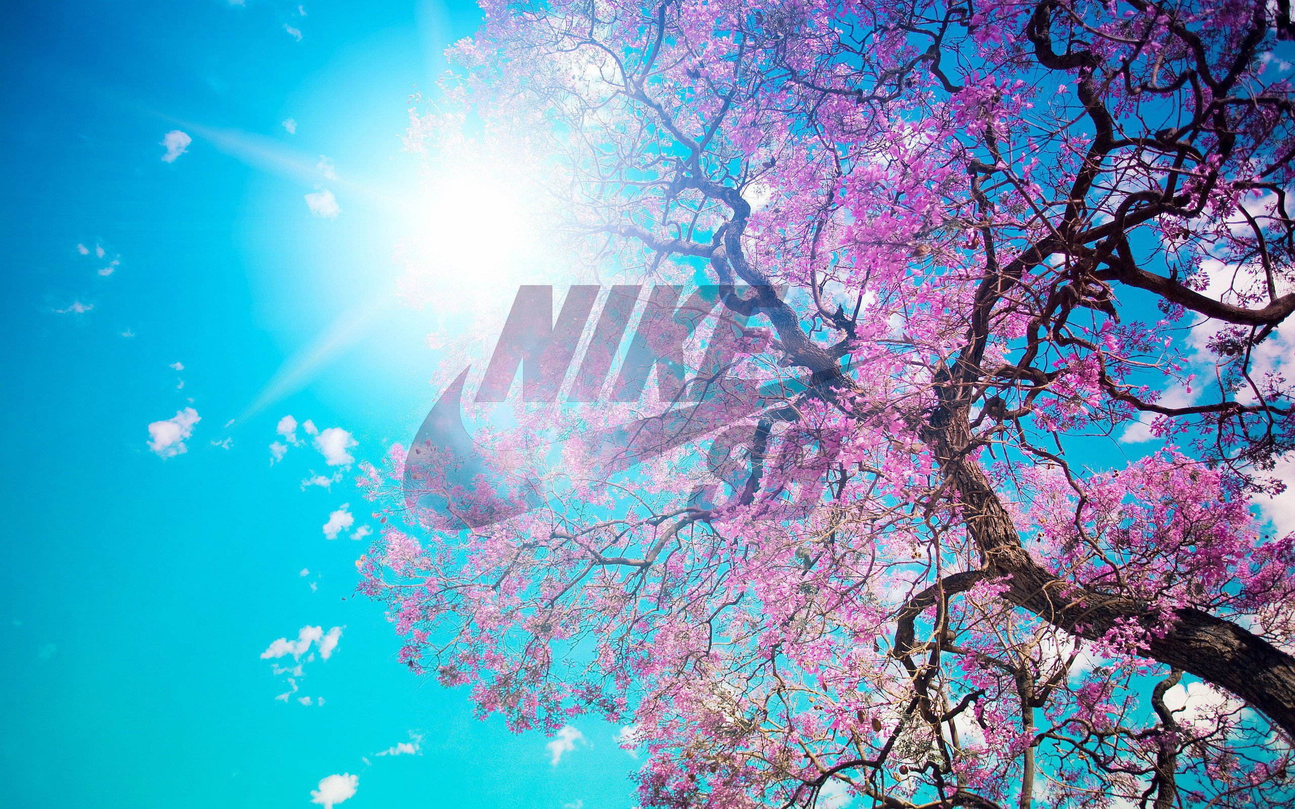 26c13e66ab99 2560x1600 2560x1600 25 best ideas about  b Nike sb wallpaper  b
