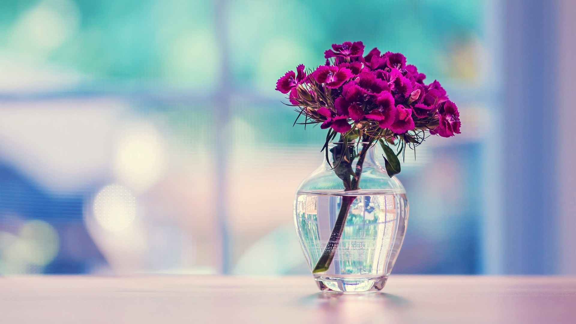 Flower Desktop Backgrounds 60 Images