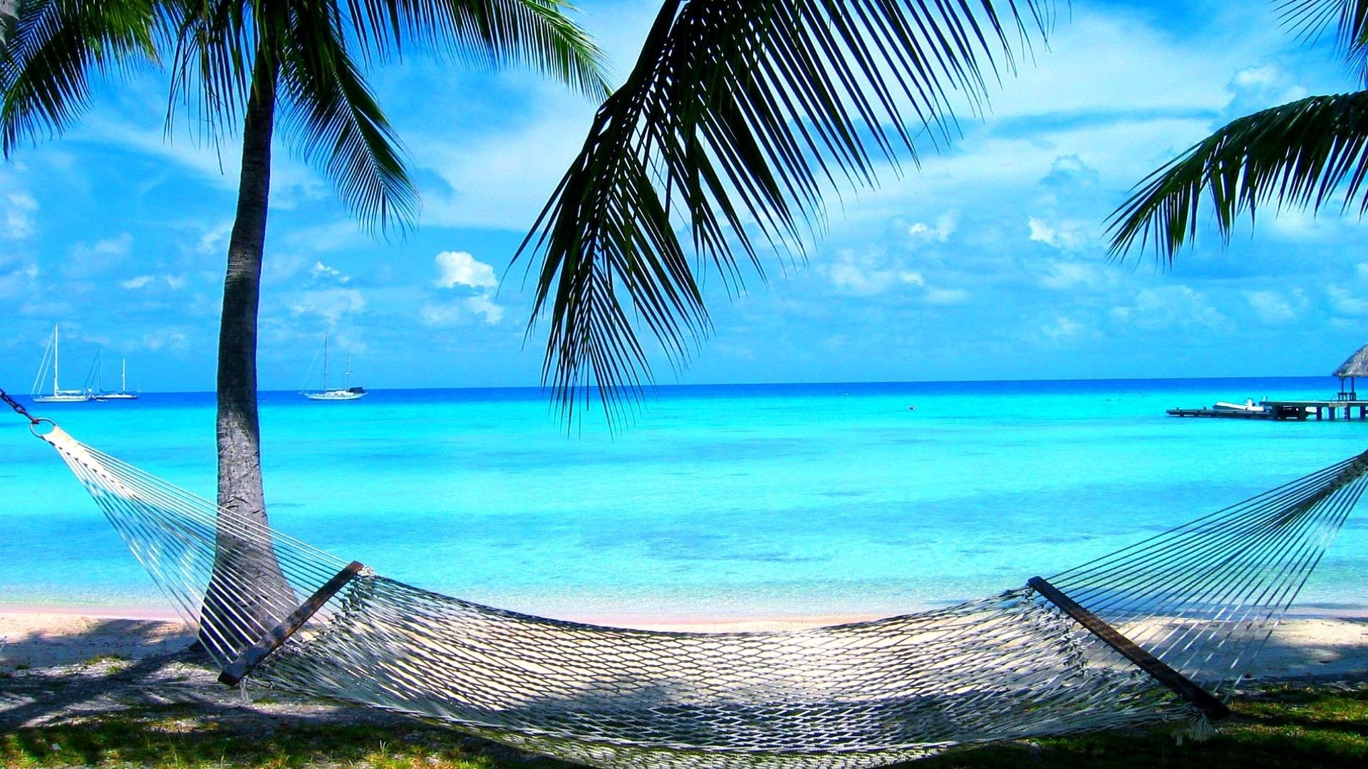 1920x1080 Palms Beach Hammock Sea Relaxation Summer Desktop Wallpaper