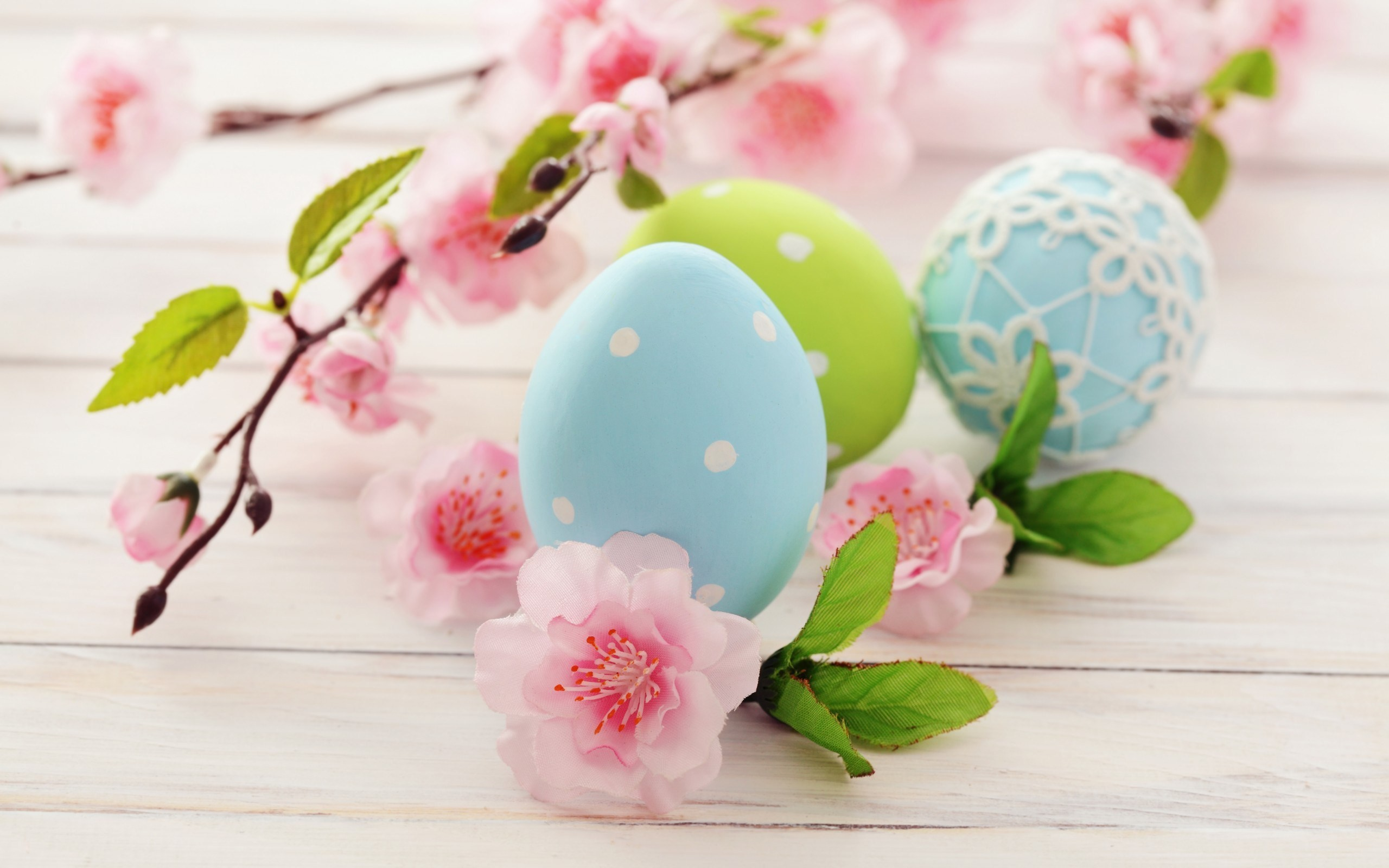 2560x1600 Eggs Holiday Spring Easter