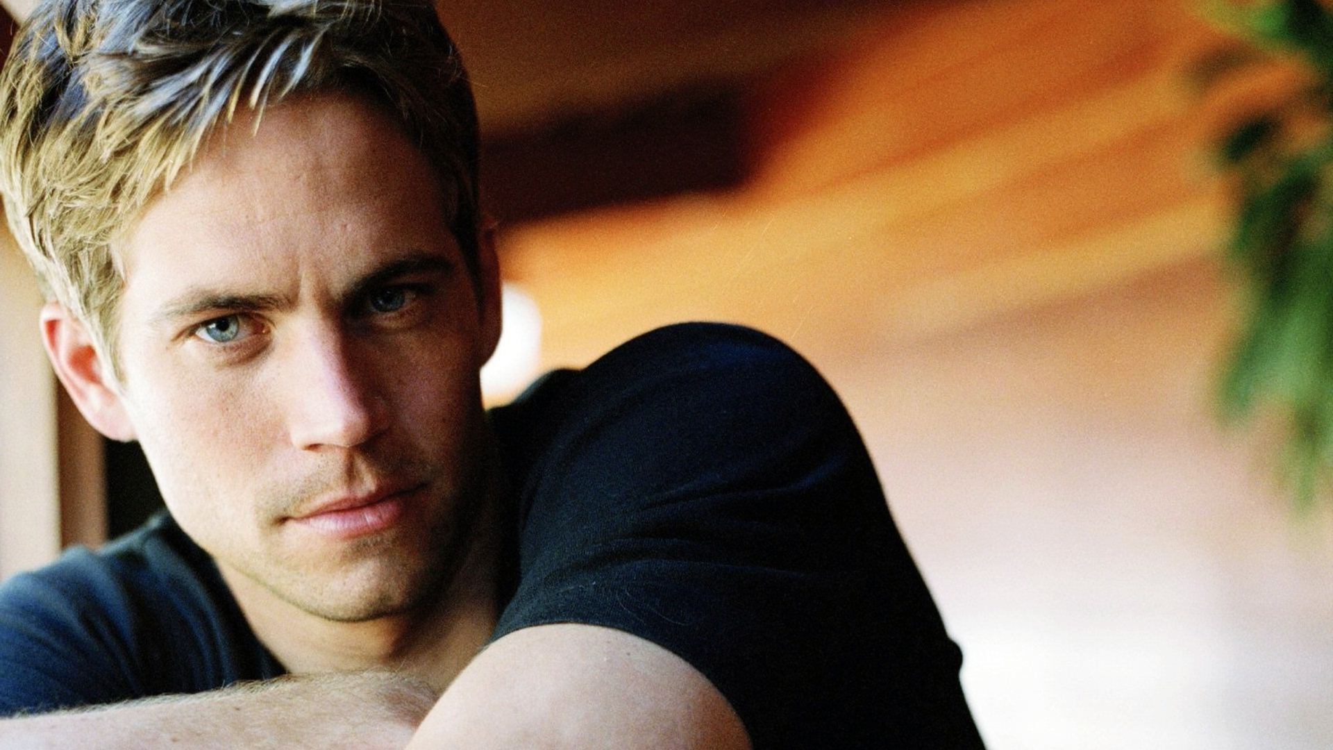 1920x1080 Paul Walker Hd Wallpapers Fast Furious Wallpaper Free 7