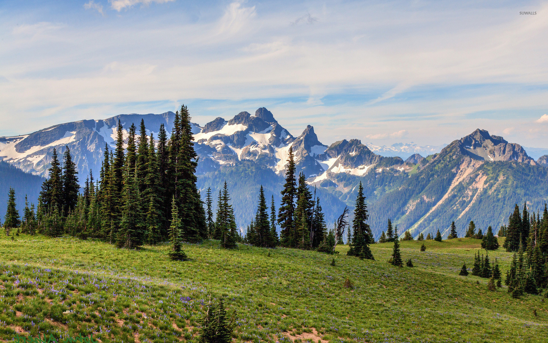 1920x1200 Mount Rainier National Park [3] wallpaper