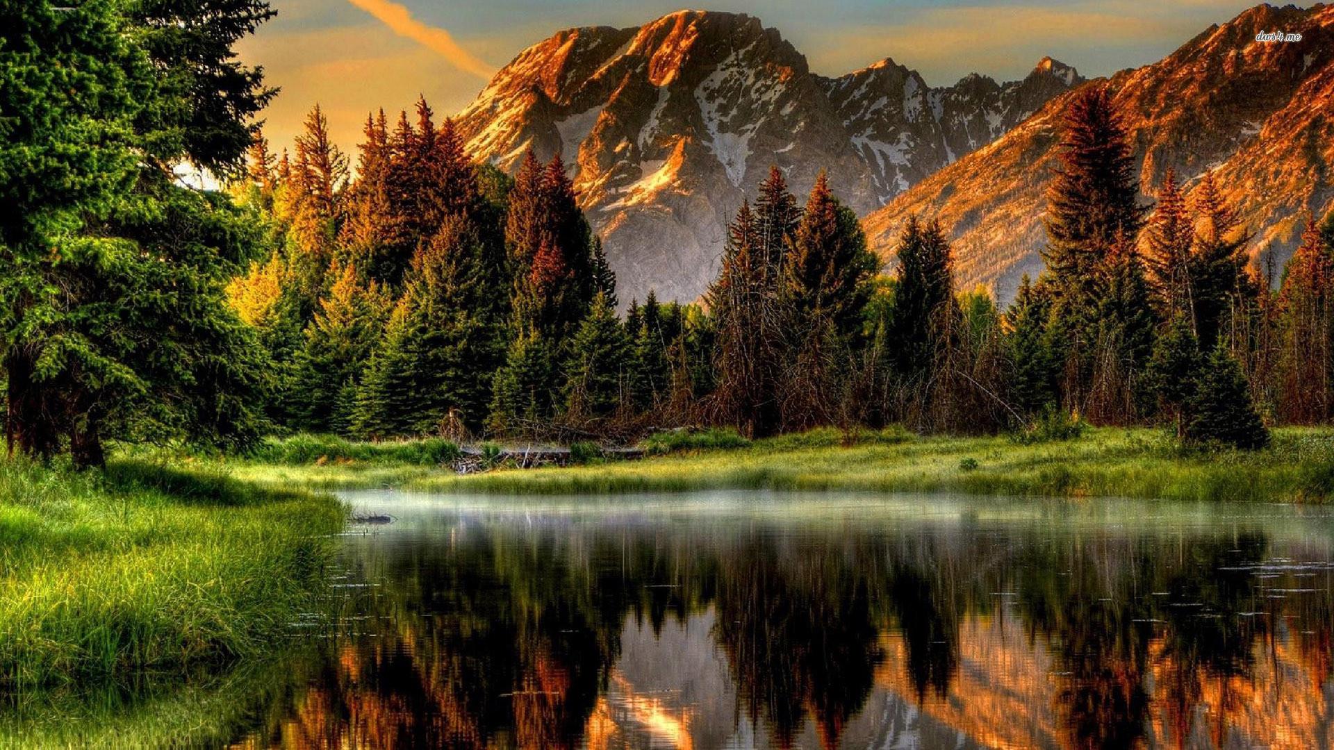 Nexus Desktop Wallpaper Nature (60+ images)