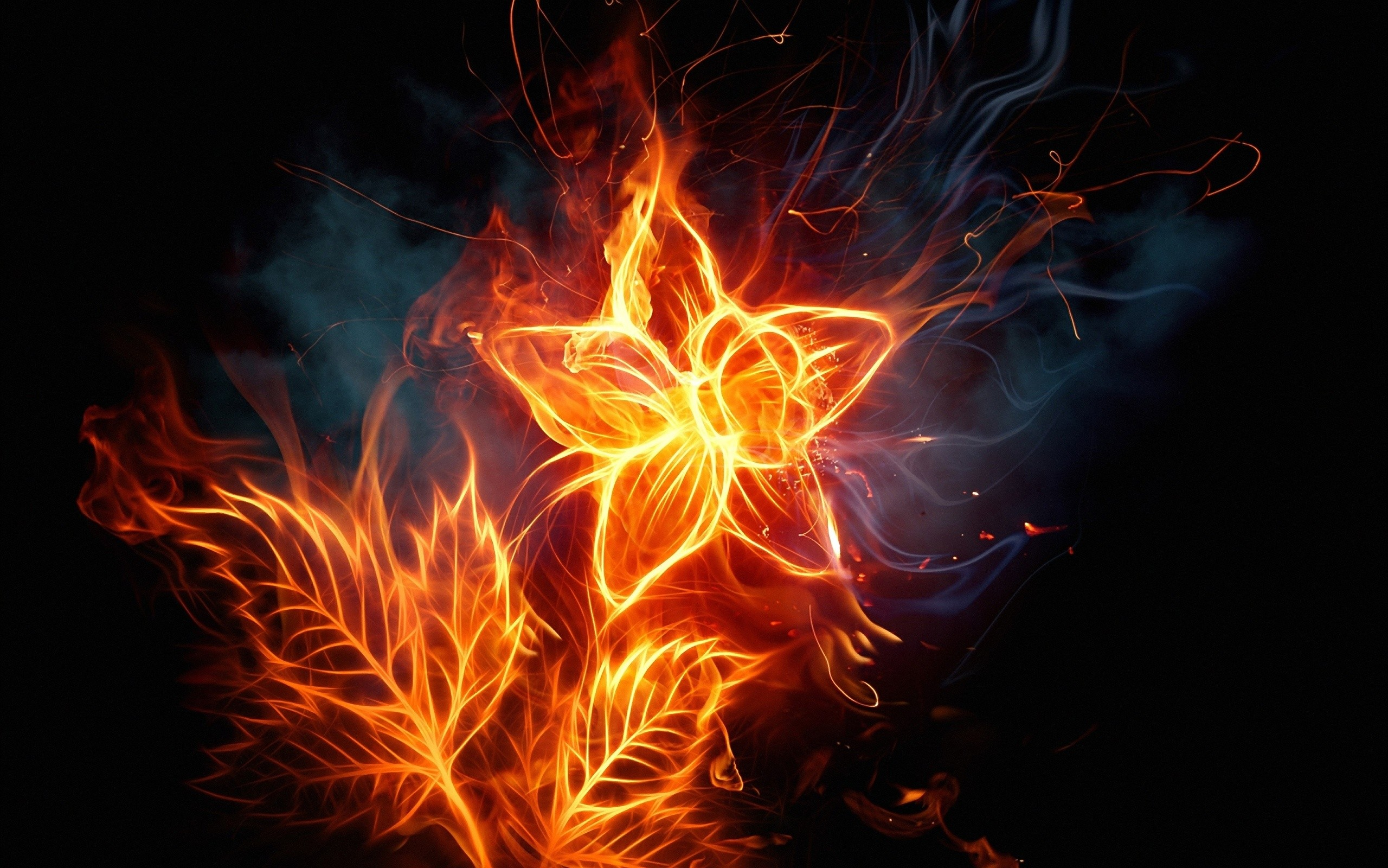 Wallpaper For Fire Tablet 82 Images
