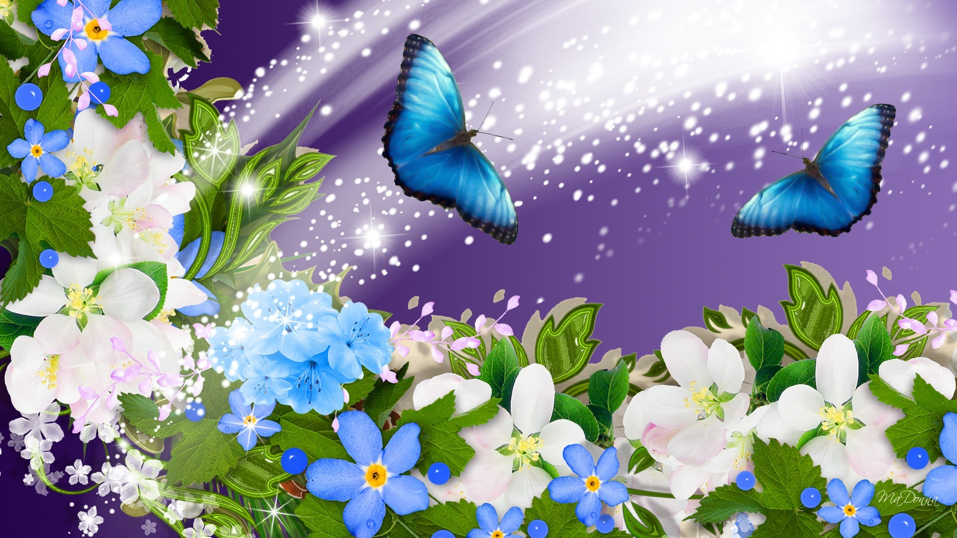 1920x1080 Flower Free Spring Wallpaper