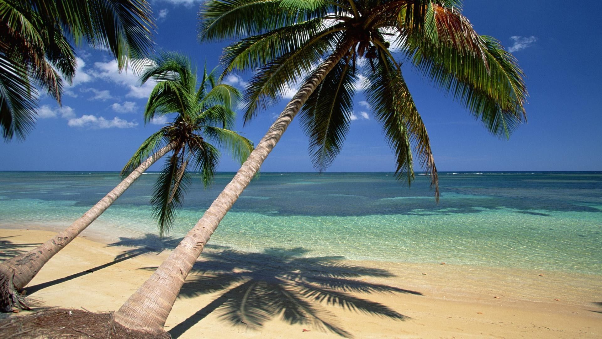 Dominican Republic Wallpapers (58+ images)