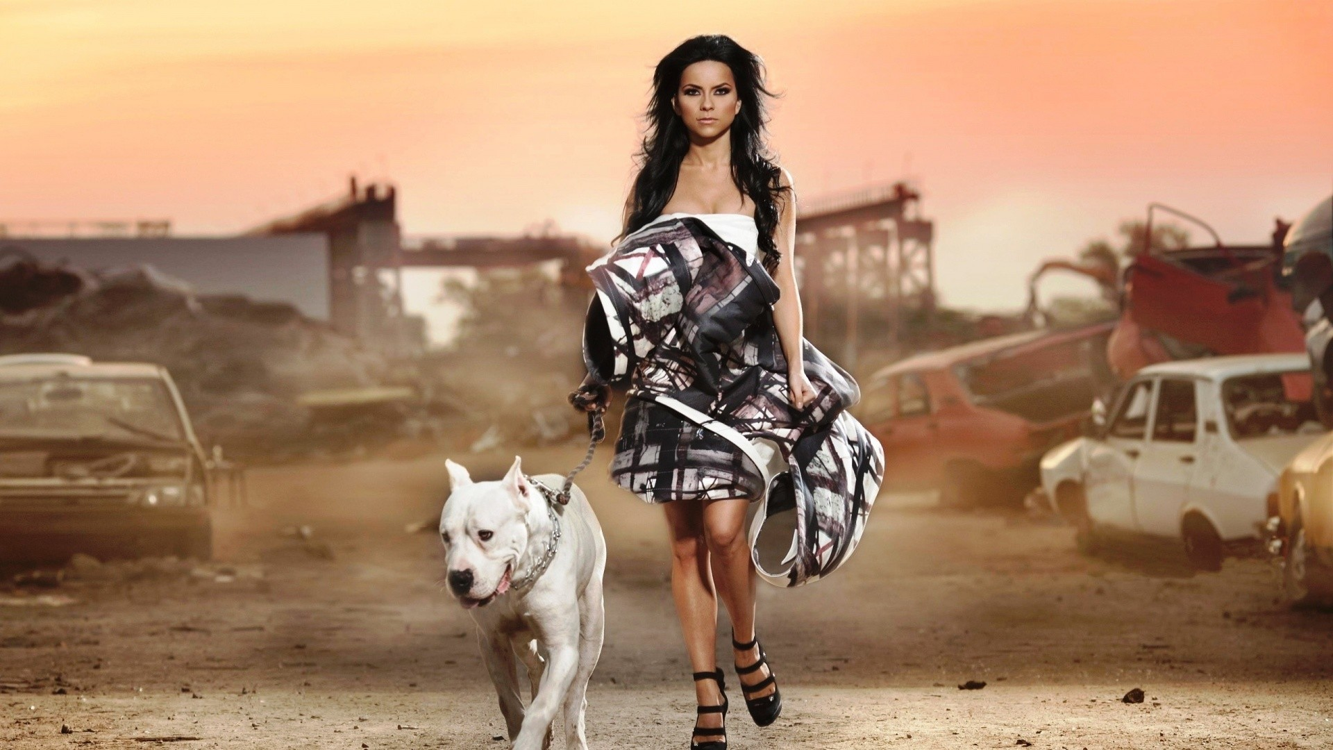 1920x1080 Description-The-above-is-Woman-Fashion-Pitbull-in-wallpaper-wpt7403655