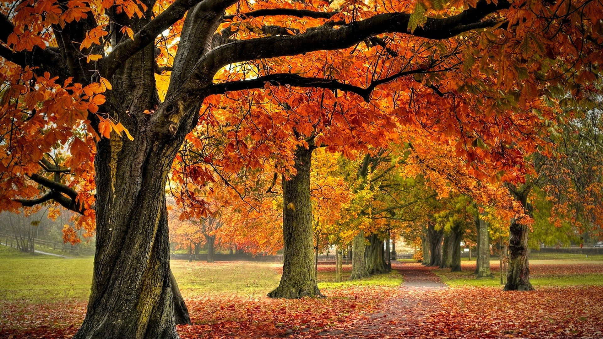 landscape autumn hd wallpaper - photo #42