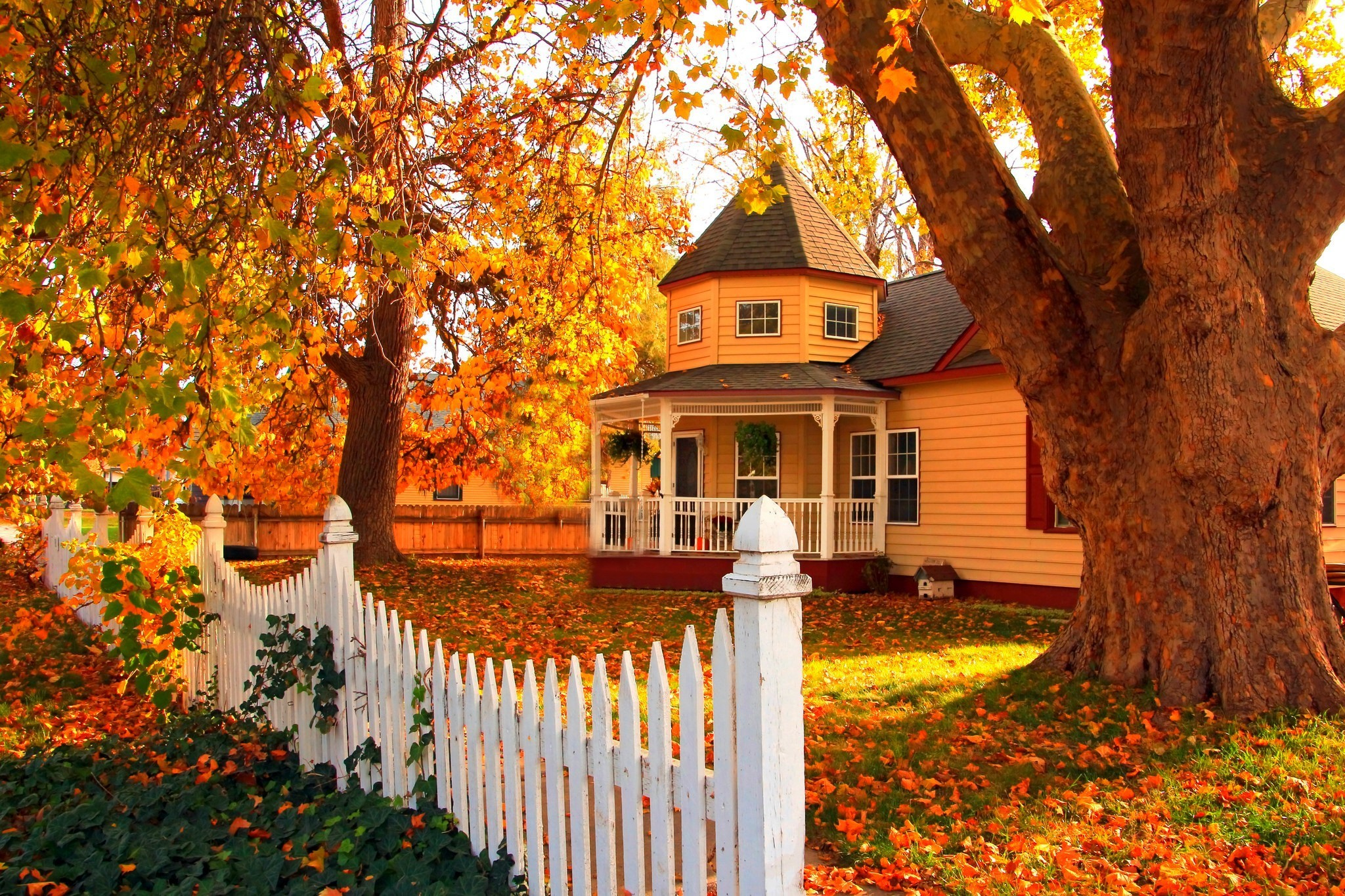 2048x1365 Man Made - House Man Made Orange Architecture Fence Fall Tree Leaf Wallpaper