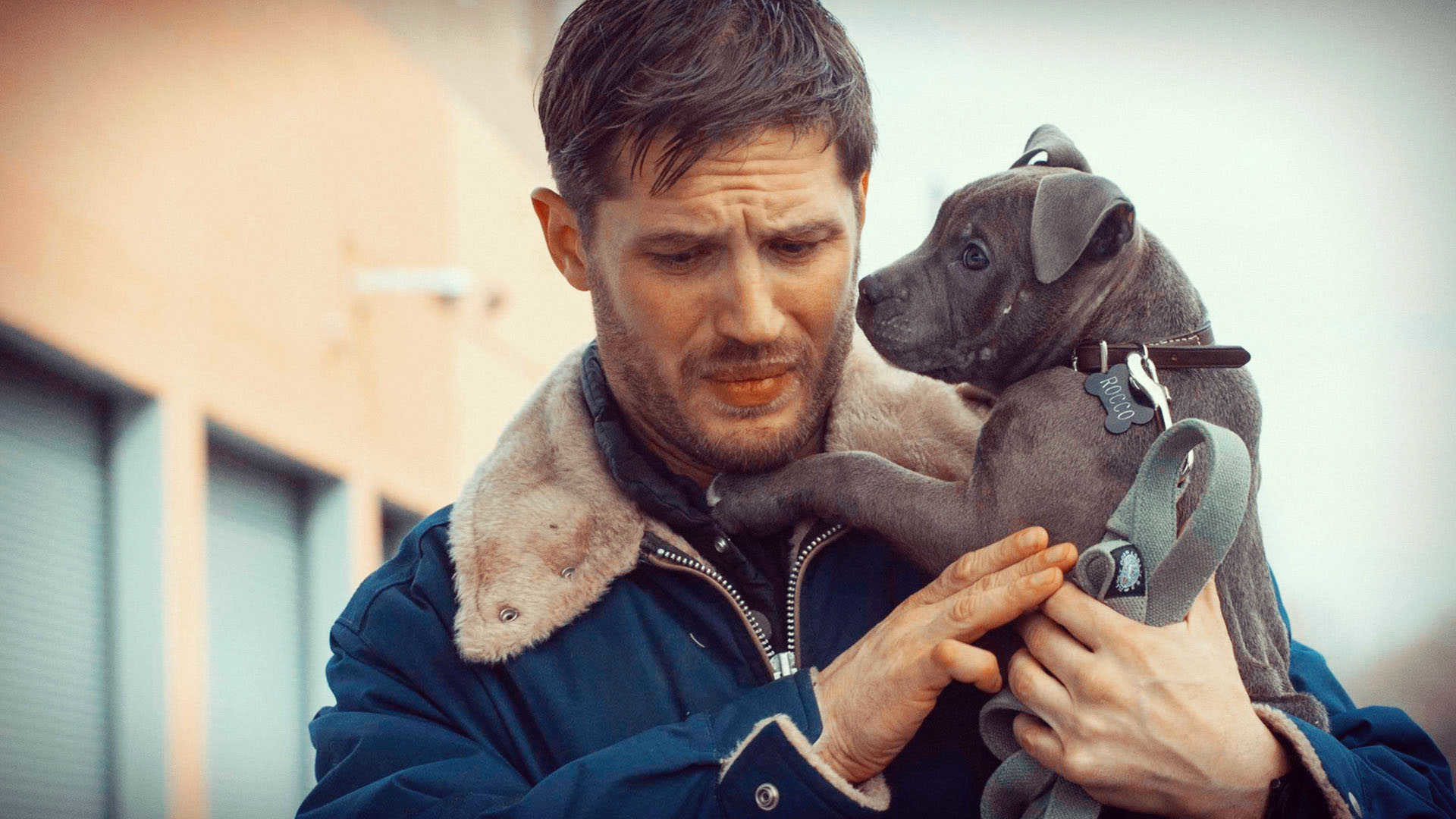 1920x1080 Tom Hardy Wallpapers High Resolution And Quality Download