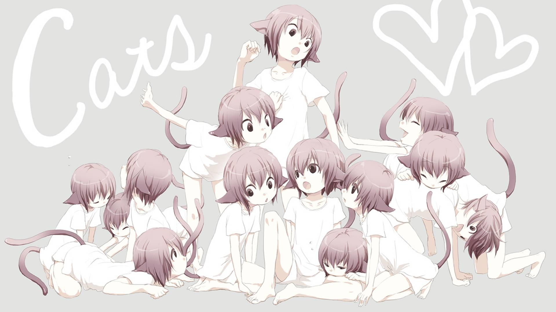 Anime Cat Girl Wallpaper 72 images