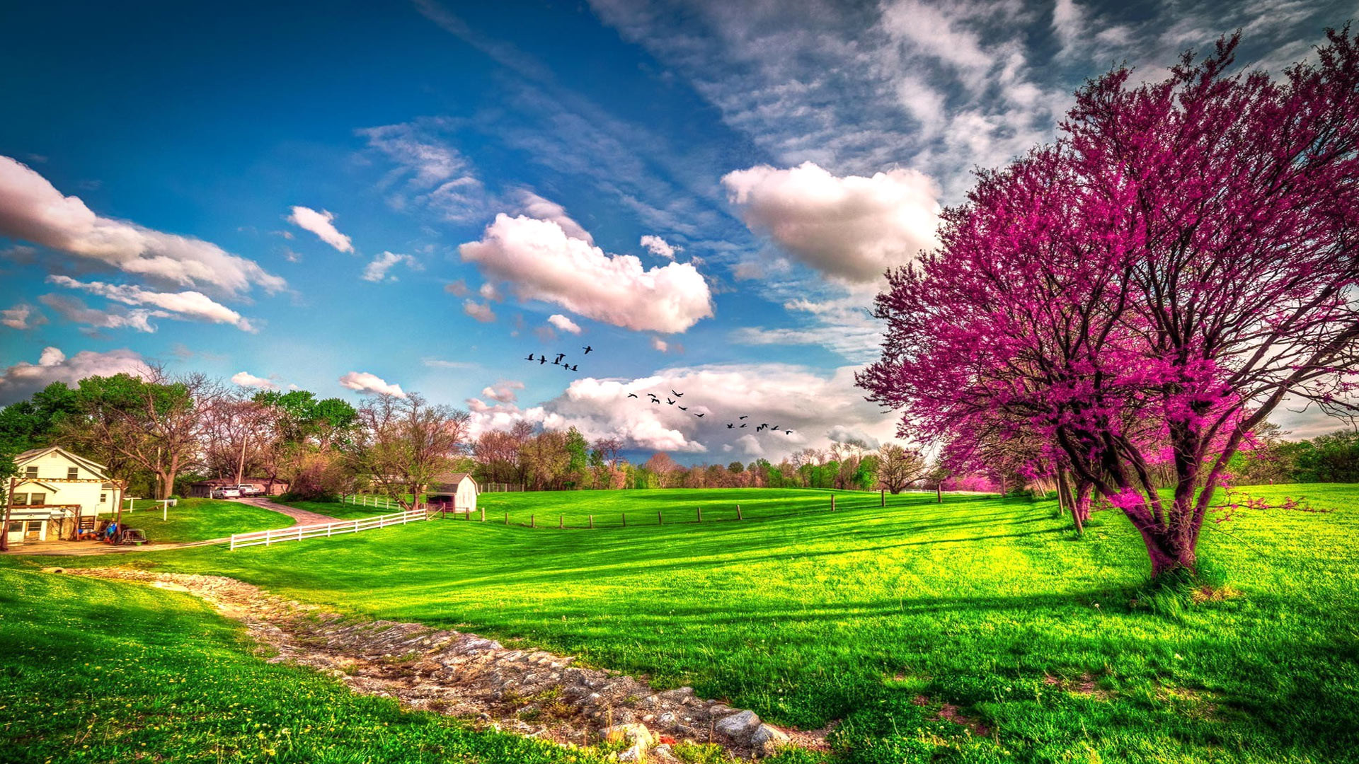 1920x1080 ... Beautiful spring wallpapers ...