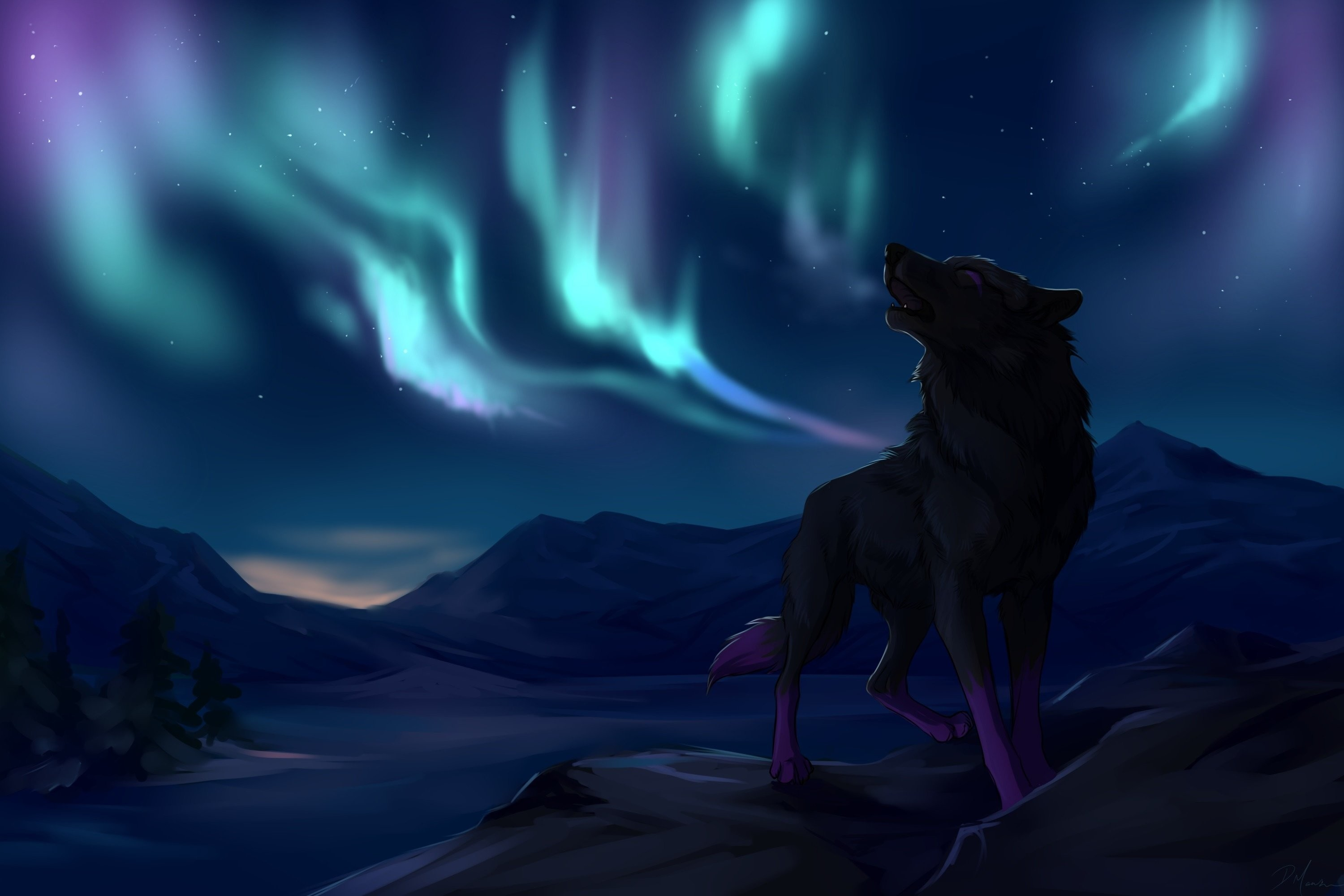 Cool Wolf Wallpapers 59 Images