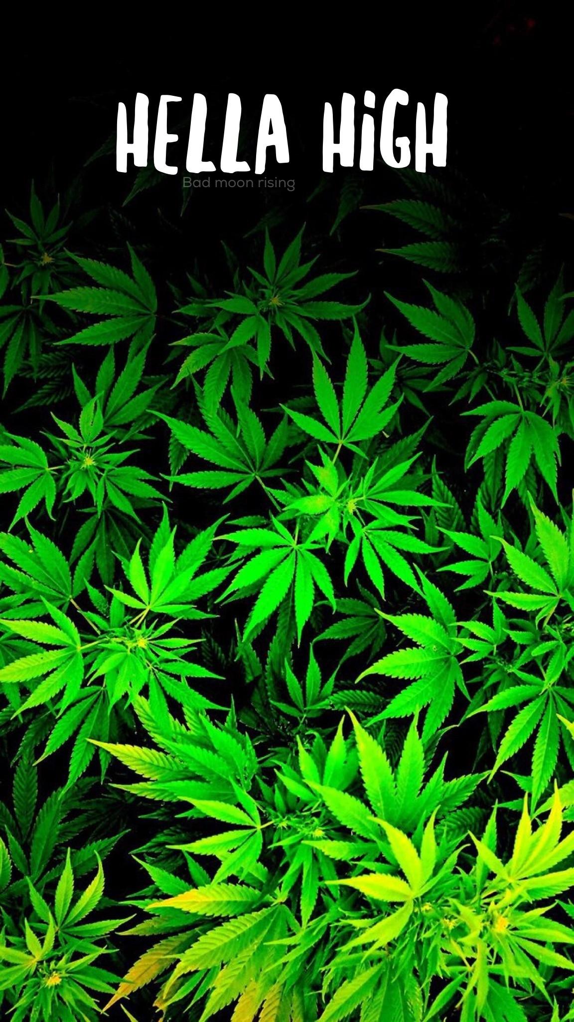 1152x2048 Hella High IPhone Wallpaper Background Stoner Marijuana