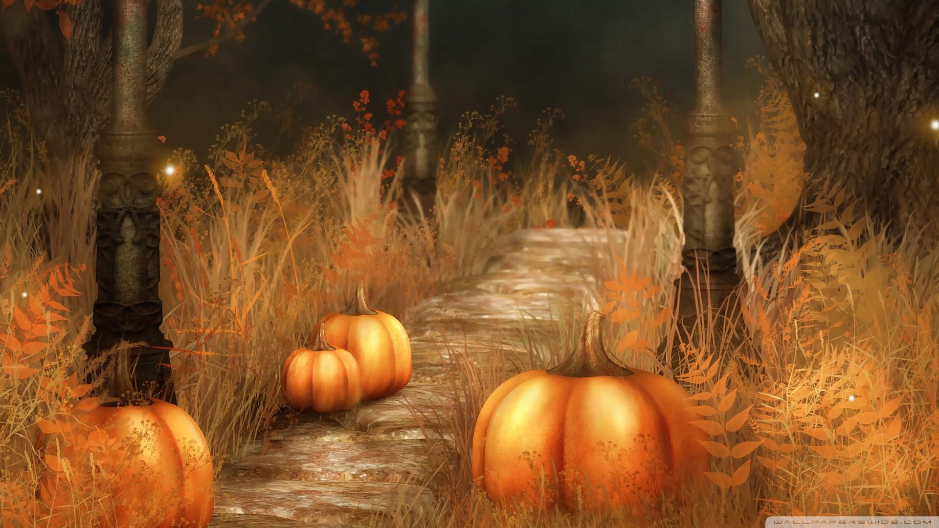 3072x2048 Pretty Pumpkin Desktop Wallpaper