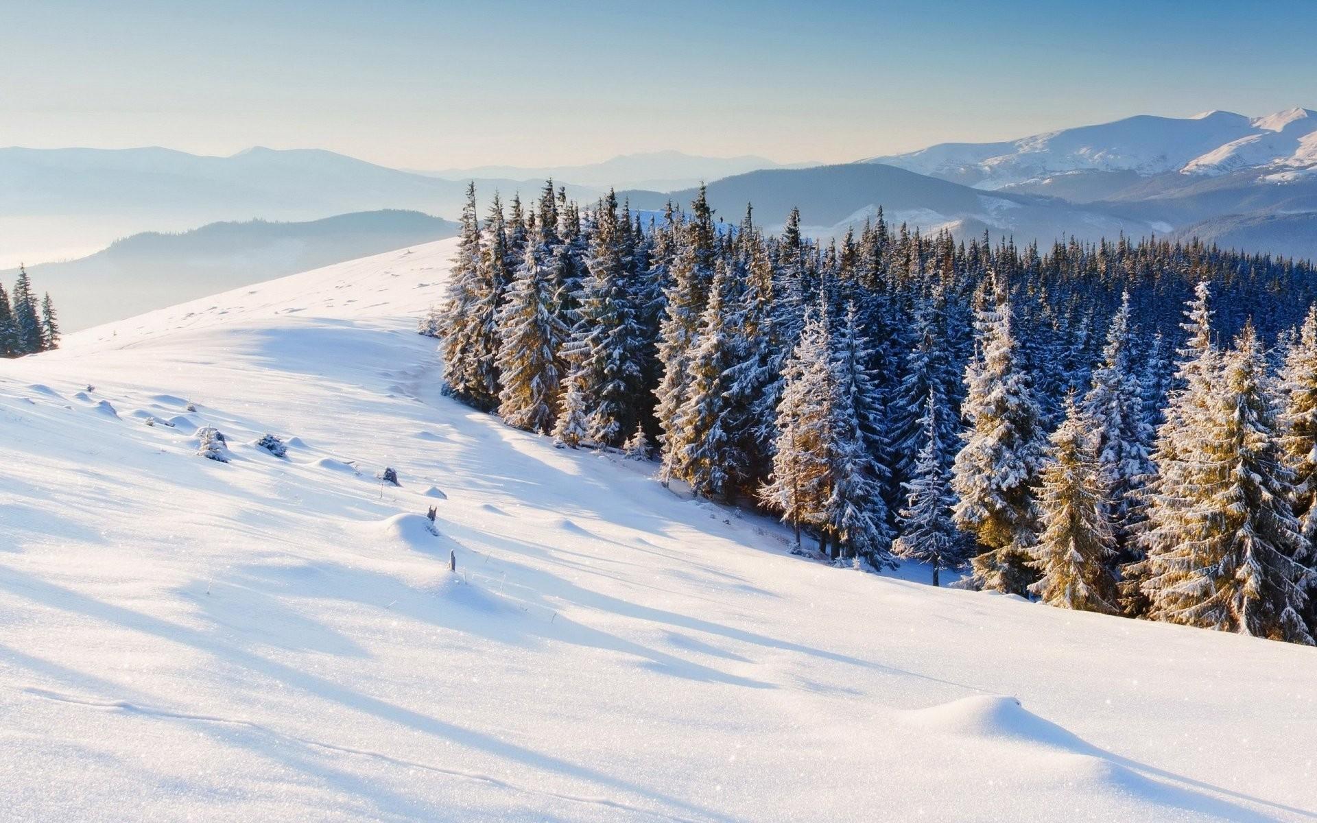 Snow christmas wallpaper 59 images - Christmas nature wallpaper ...