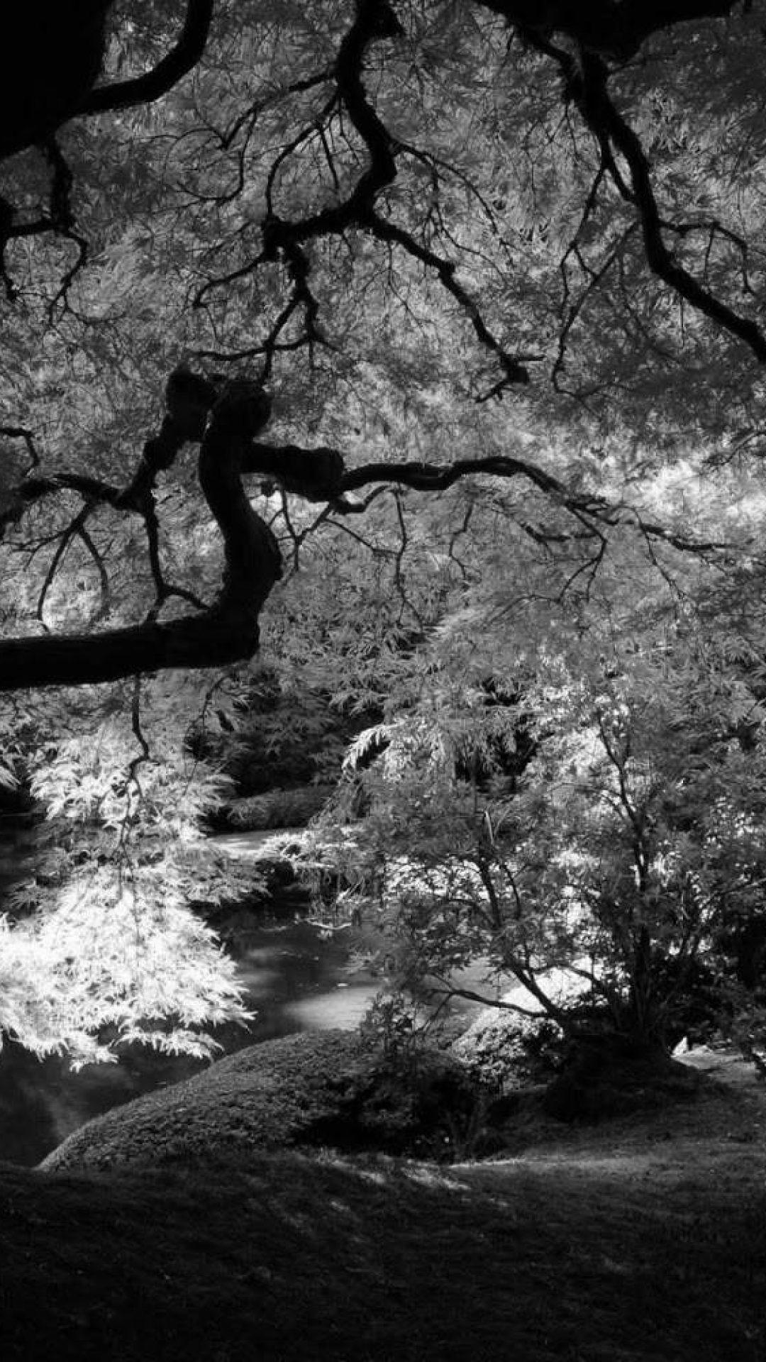 1920x1080 Black And White Landscapes Nature Monochrome Sea Wallpaper