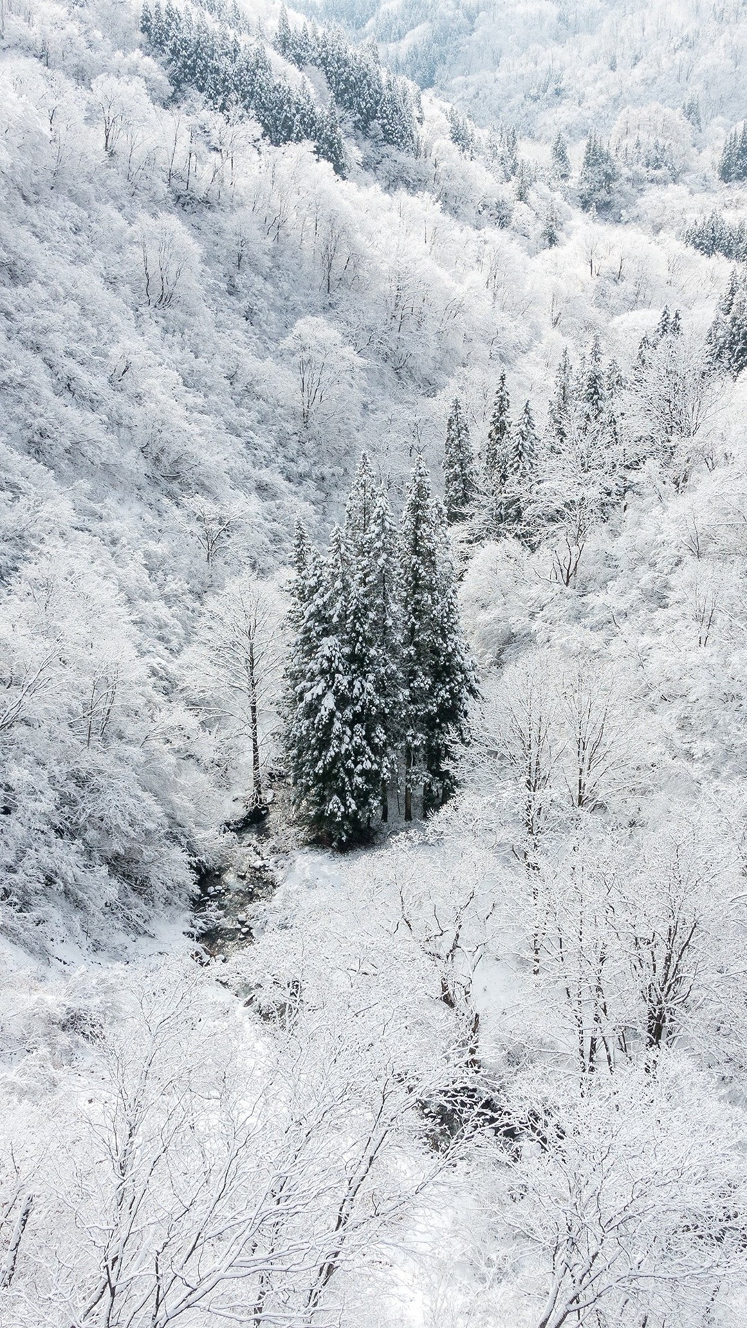 Winter Wallpaper For Iphone 86 Images
