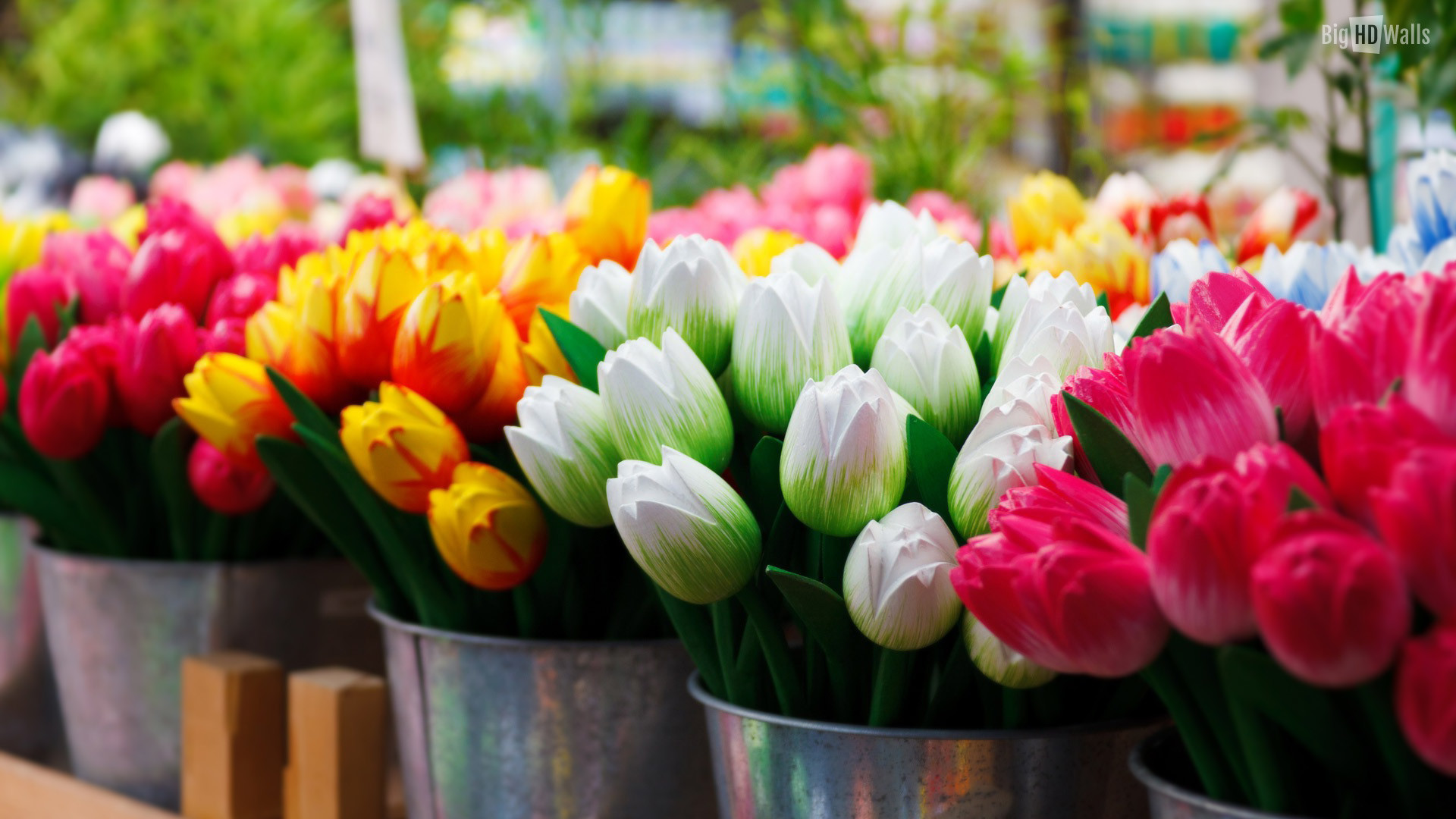 Tulips Background Wallpaper (70+ Images