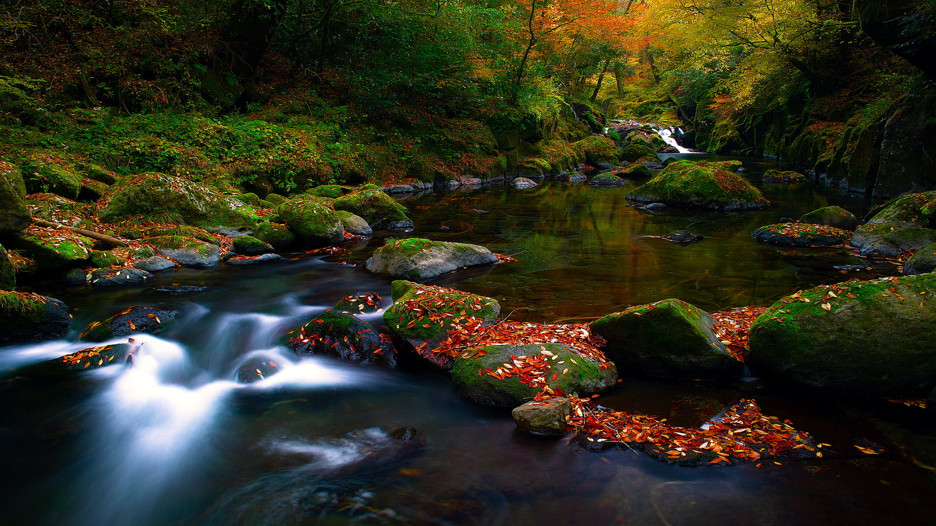 1920x1080 NATURE FOREST RIVER MOUNTAIN SCENERY DESKTOP BACKGROUND WALLPAPER .