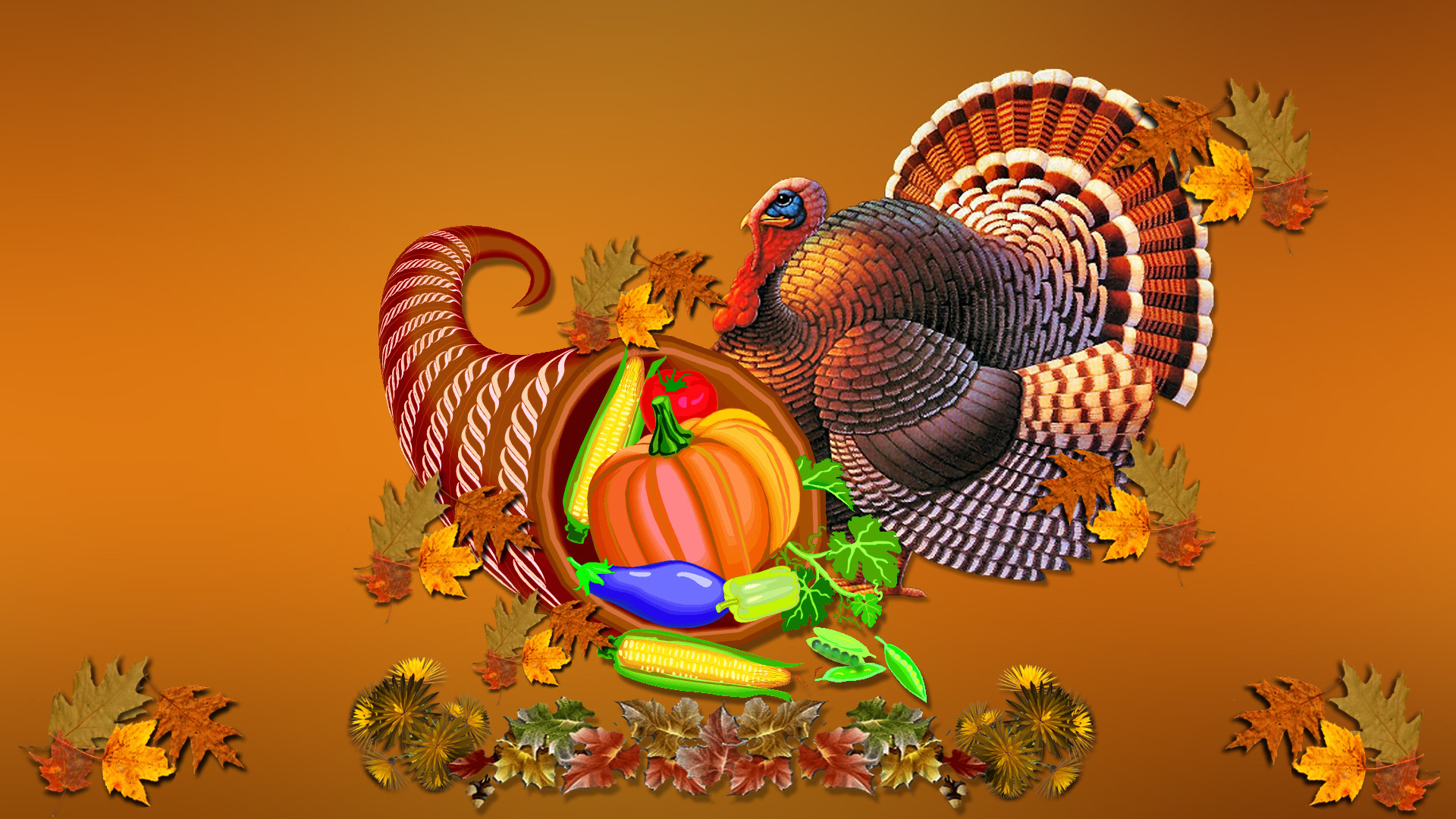 1920x1080 Turkey-pictures-thanksgiving-day-2012-wallpapers