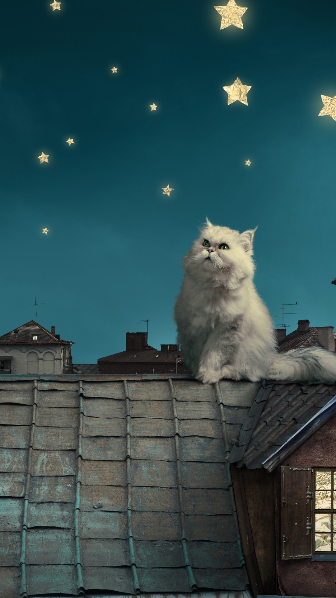 1080x1920  Wallpaper white persian cat, kitten, fairy tale, fantasy, roofs,  houses