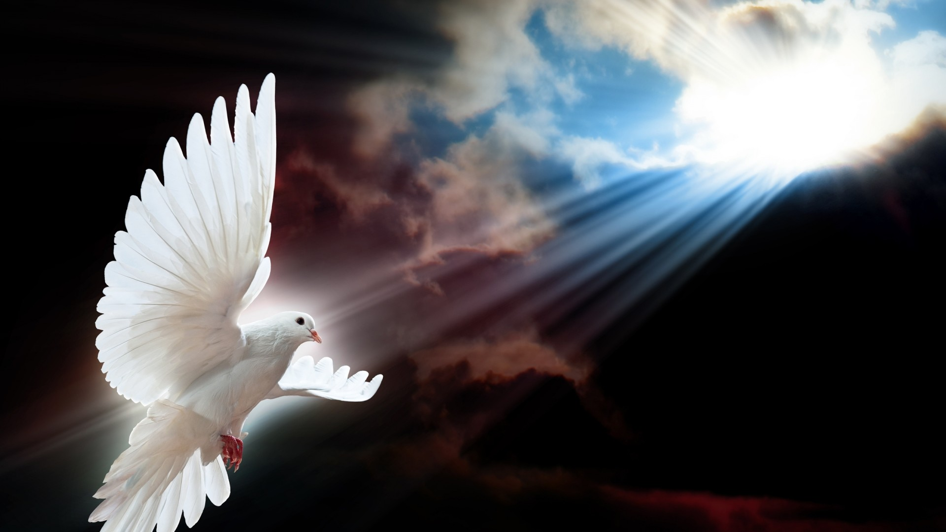 Holy Spirit Wallpapers 60 Images