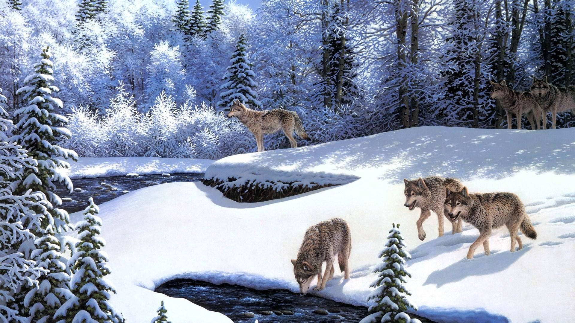 1920x1080 Winter Wolves Wallpaper - HD Wallpapers Backgrounds of Your Choice