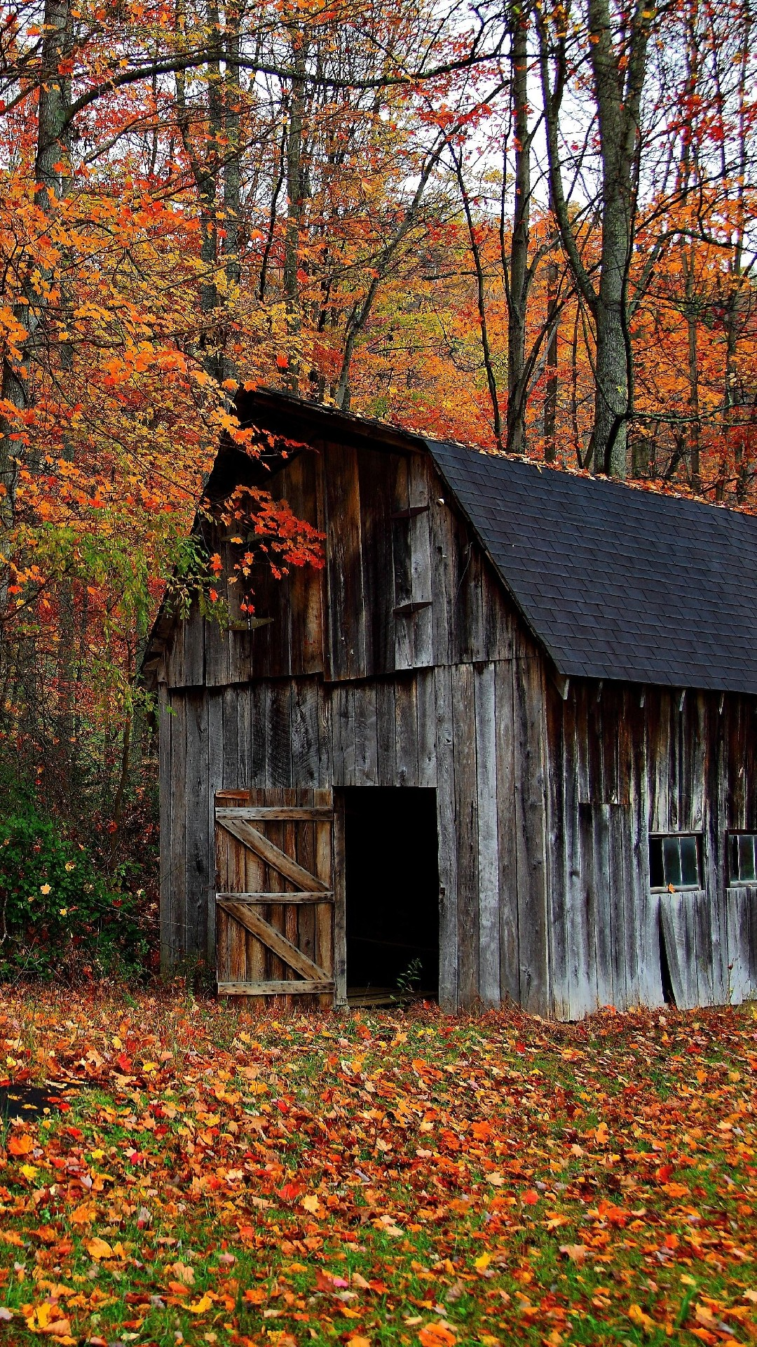 1080x1920 Iphone wallpaper Autumn cabin in the wood ...