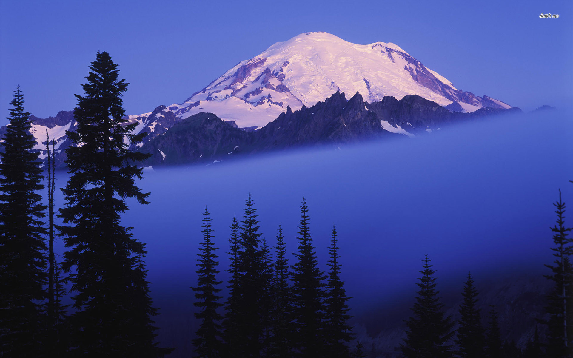 1920x1200 ... Mount Rainier wallpaper  ...