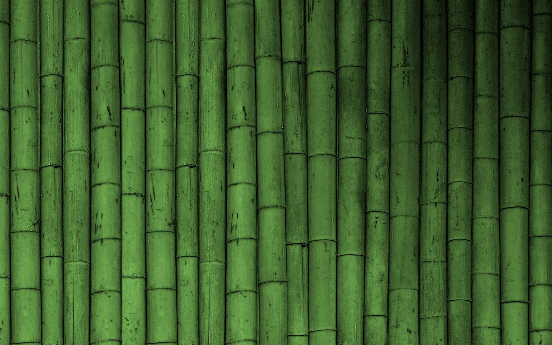 1920x1200 HD Bamboo Wallpapers Download Free 1280×800 Bamboo Wallpaper (38 Wallpapers)  | Adorable
