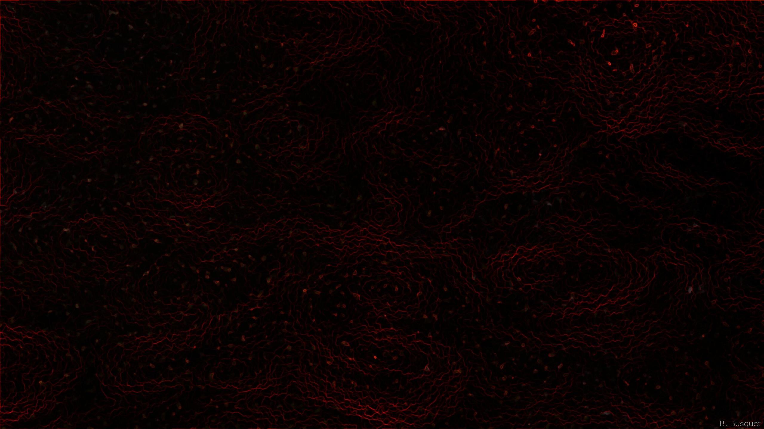 2560x1440 Pattern - Black Wallpaper