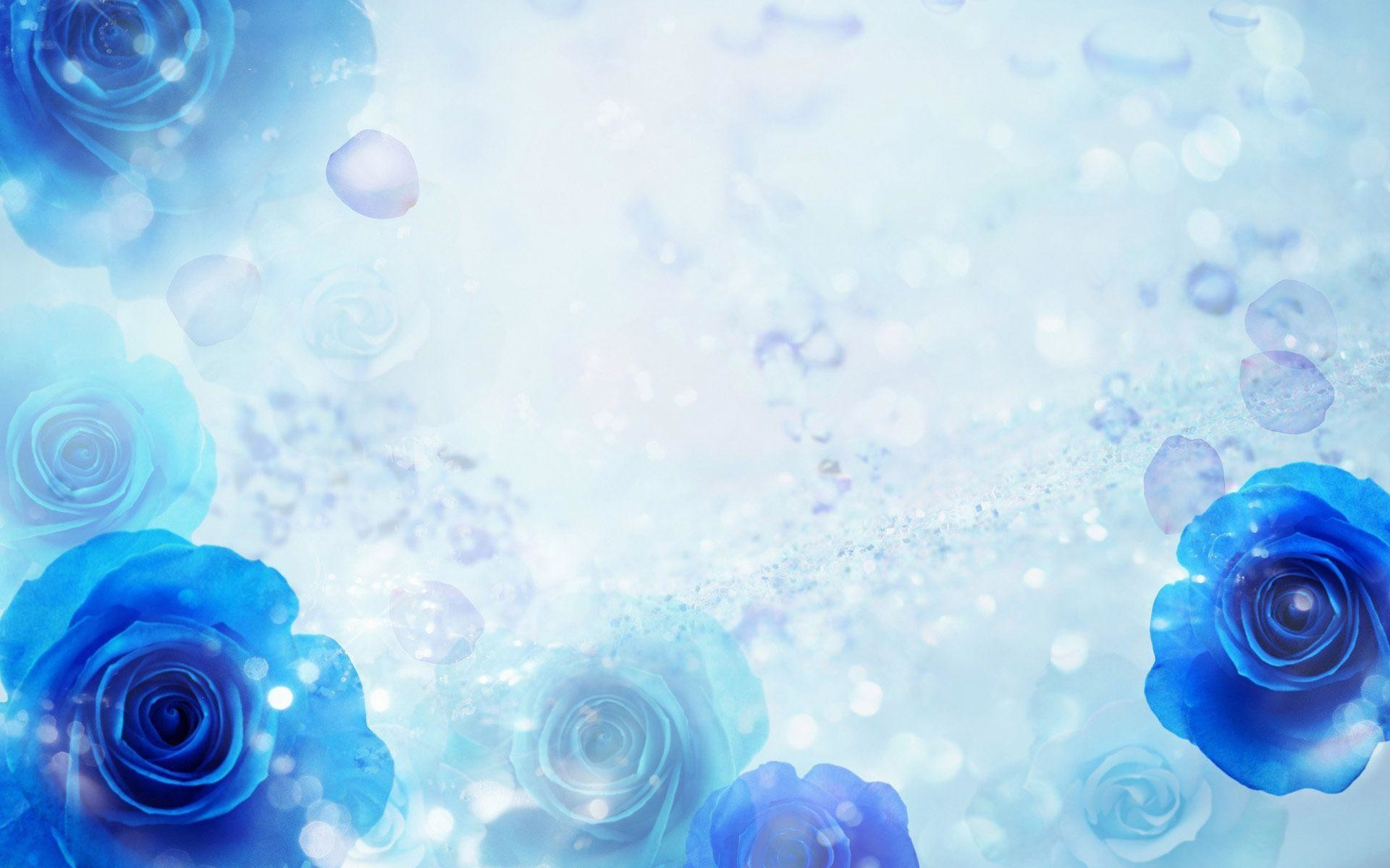 1920x1200 Wallpapers For Blue Roses Wallpaper