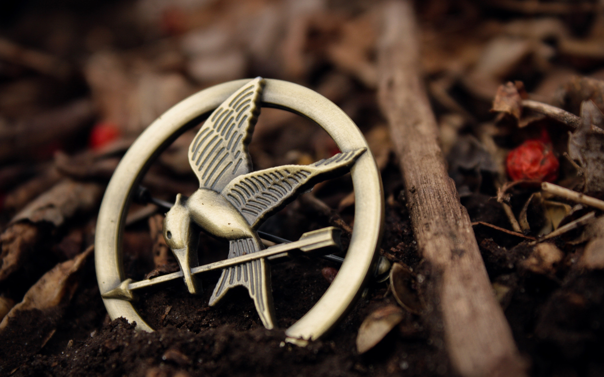 1920x1200 Hunger Games Mockingjay Wallpaper