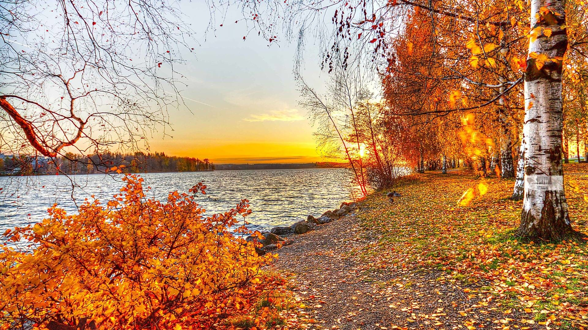Beautiful Fall Pictures Wallpaper (60+ images)