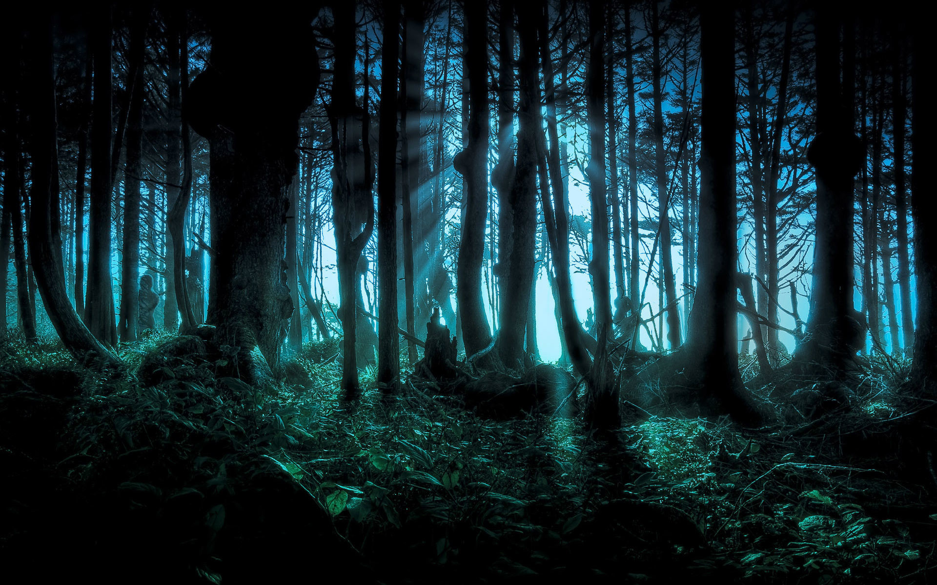 1920x1200 fantasy images | Fantasy wallpaper tree forest wallpapers Fantasy HD  Wallpaper .