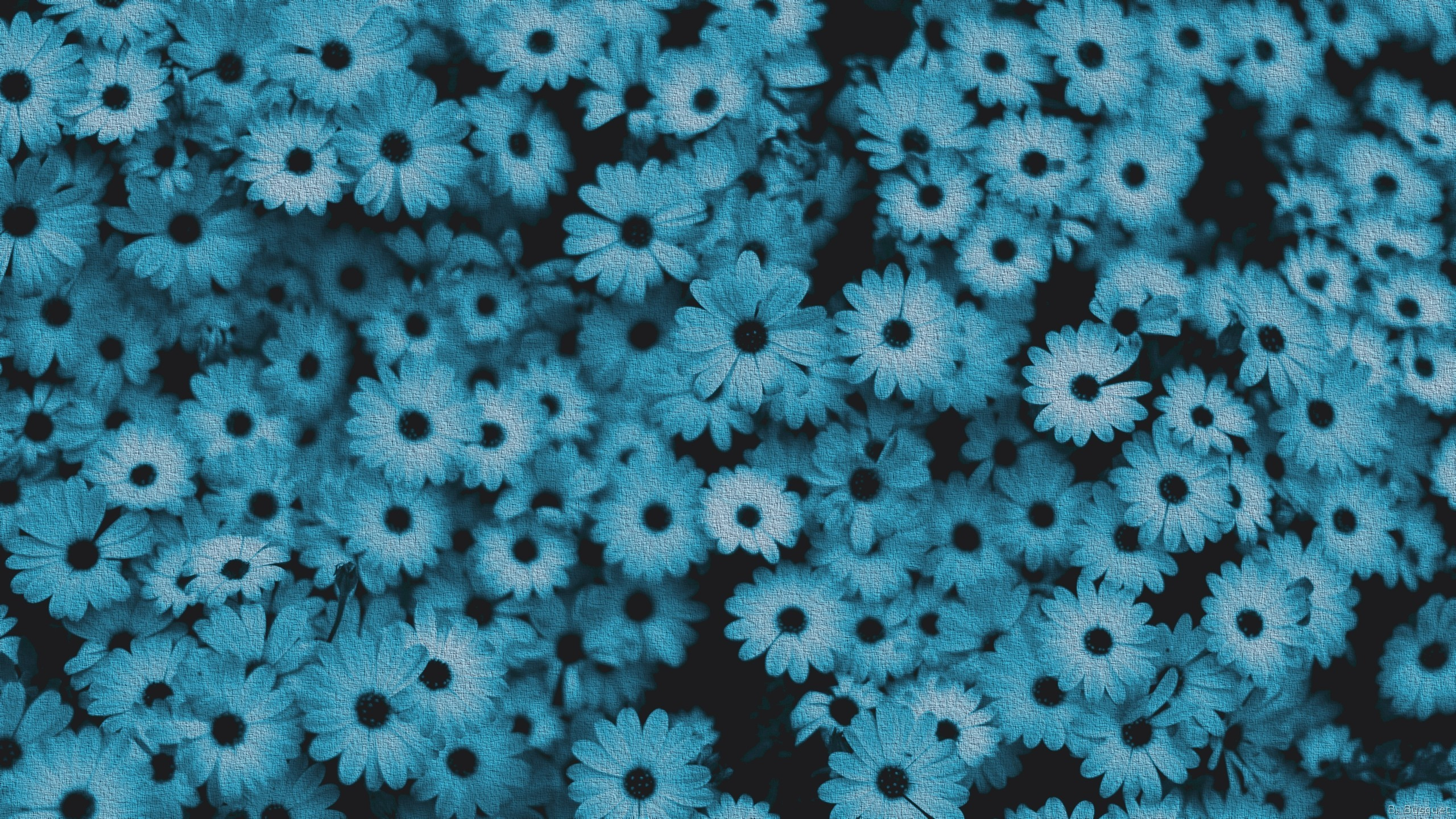 blue flower wallpaper (61+ images)
