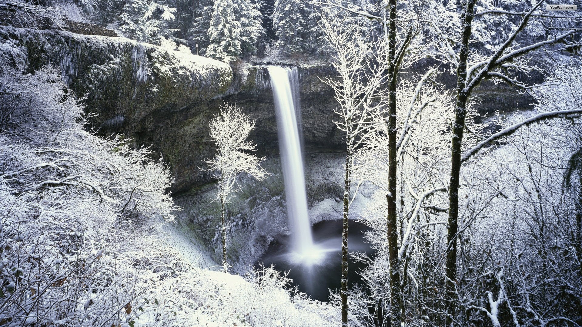 1920x1080 Snowy Forest Waterfall Wallpaper