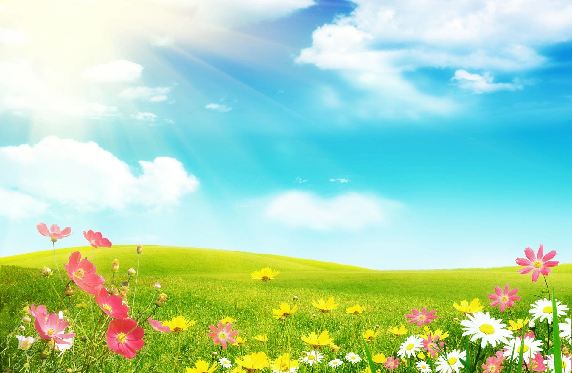1920x1200 Top Collection Of Spring Wallpapers Desktop Wallpaper Free