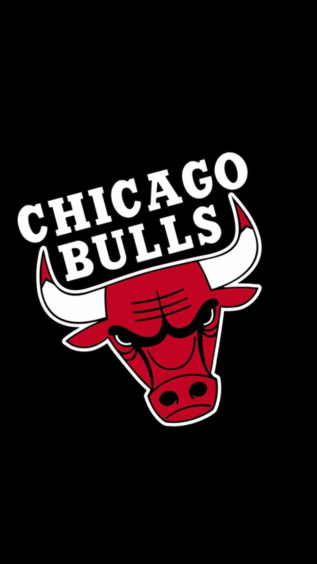 chicago bulls logo wallpaper 69 images