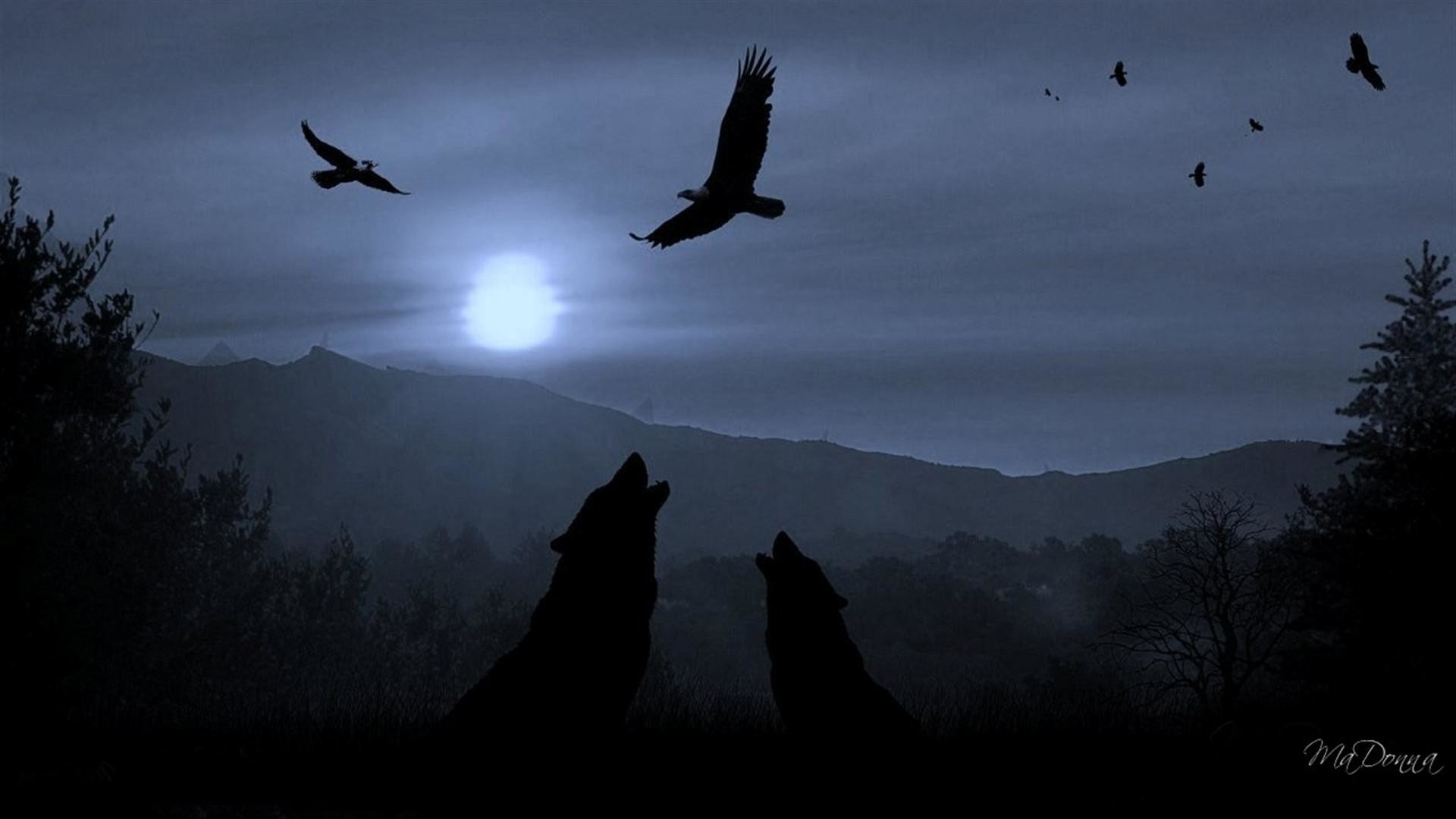1920x1080 3149) Dark Wolf Background HD wallpaper - WalOps.com