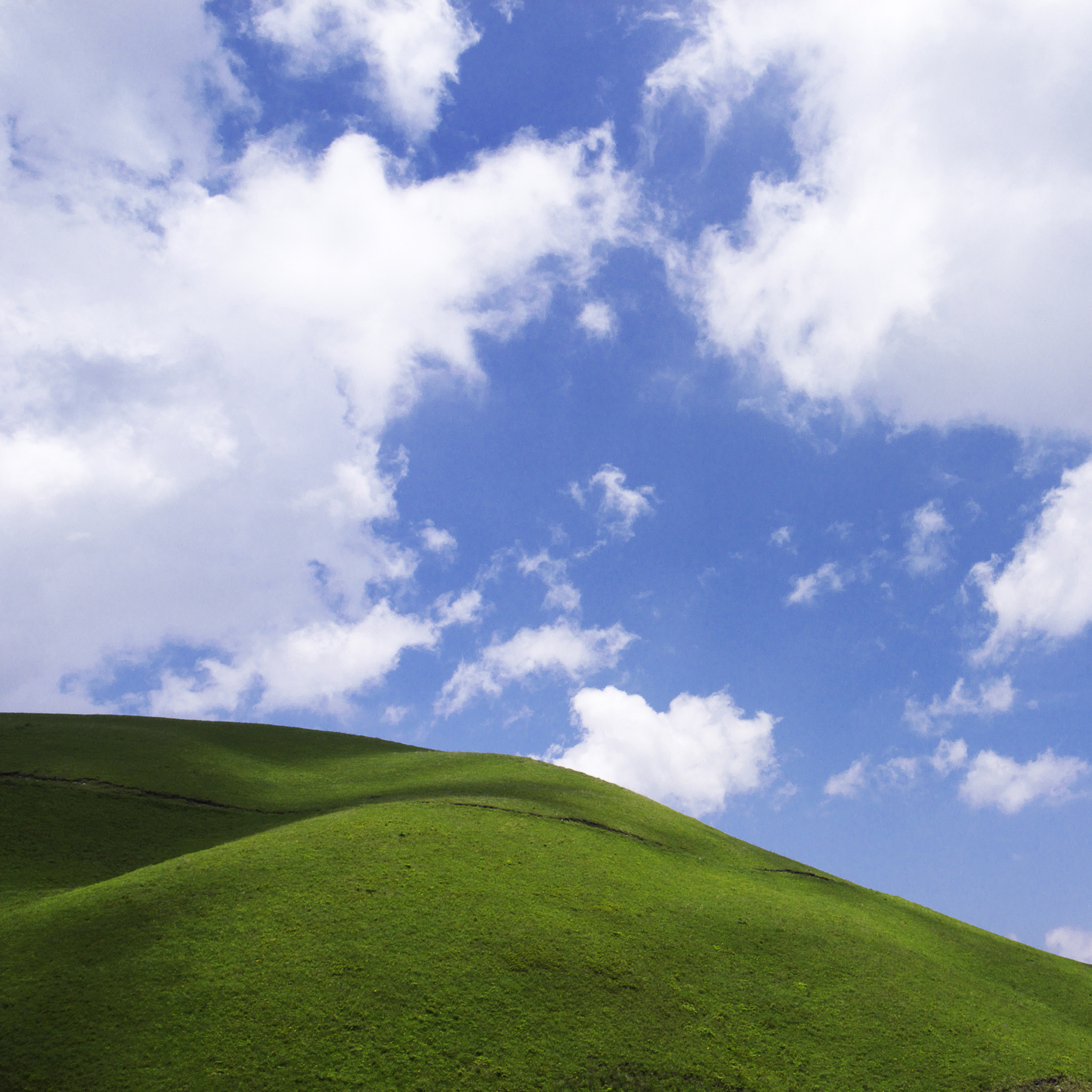 Grass And Sky Wallpaper (71+ Images