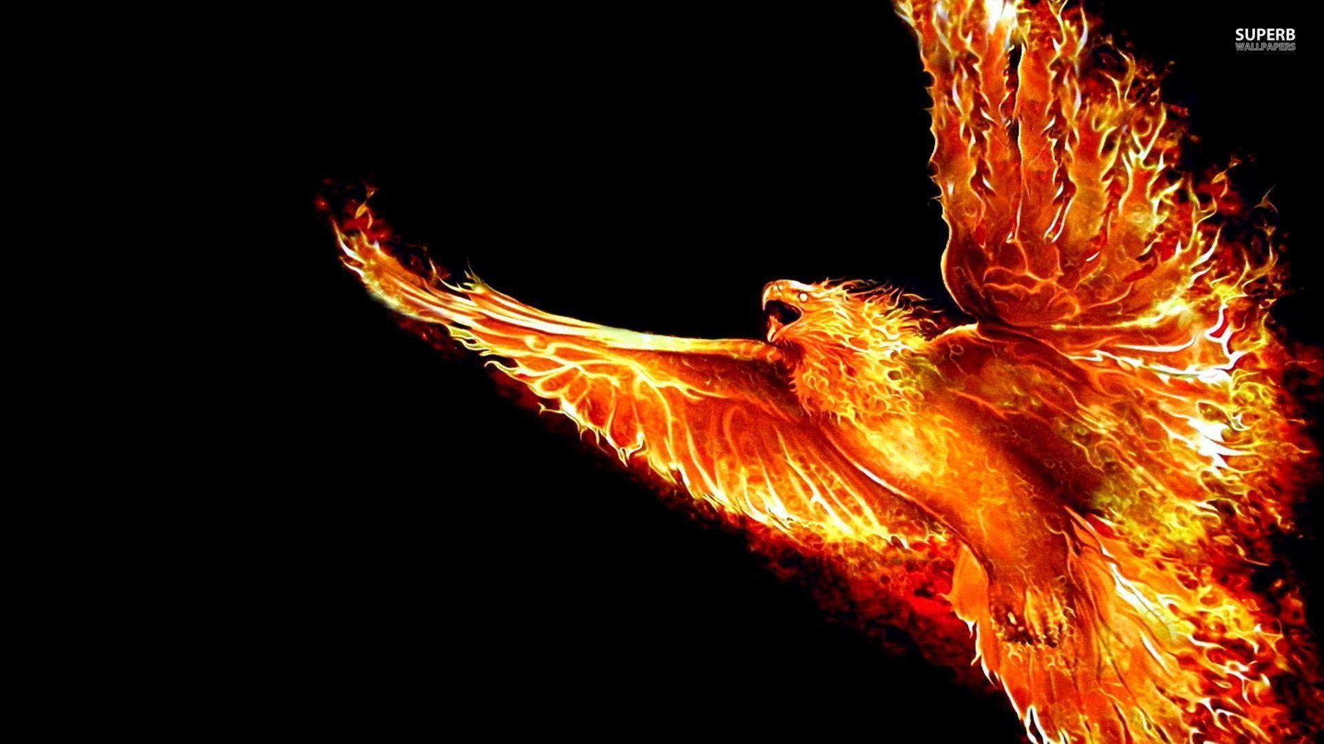 1920x1080 Phoenix wallpaper - Artistic wallpapers - #
