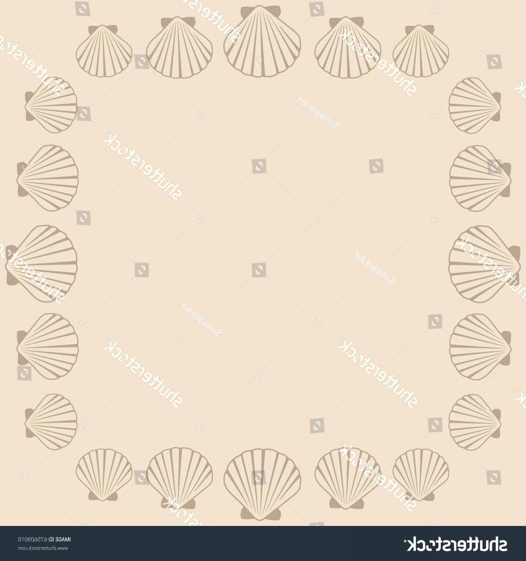 Seashell Wallpaper 66 Images