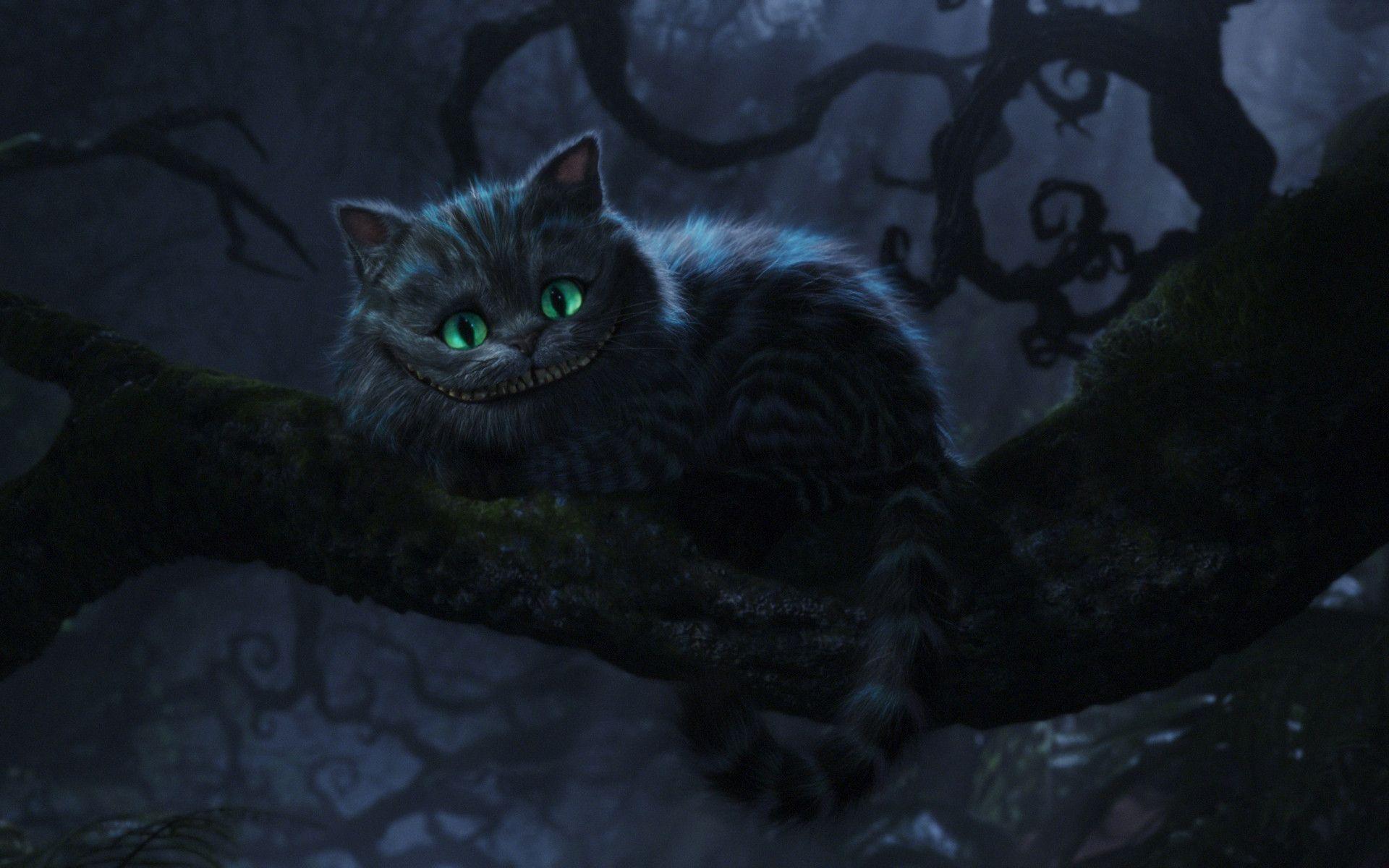 Most Inspiring Wallpaper Cat Mystical - 383619  Gallery_41416 .jpg