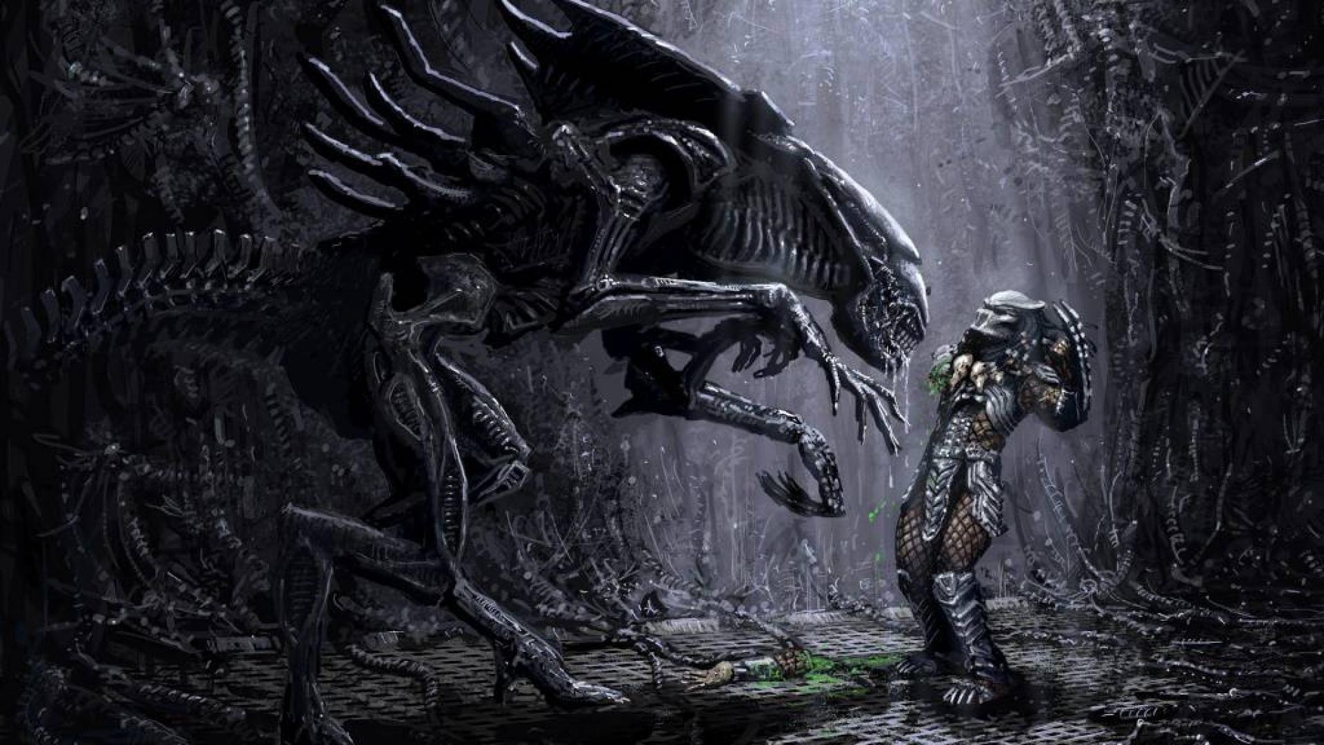 Alien Vs Predator Hd Wallpapers: Alien Vs Predator Wallpaper (80+ Images