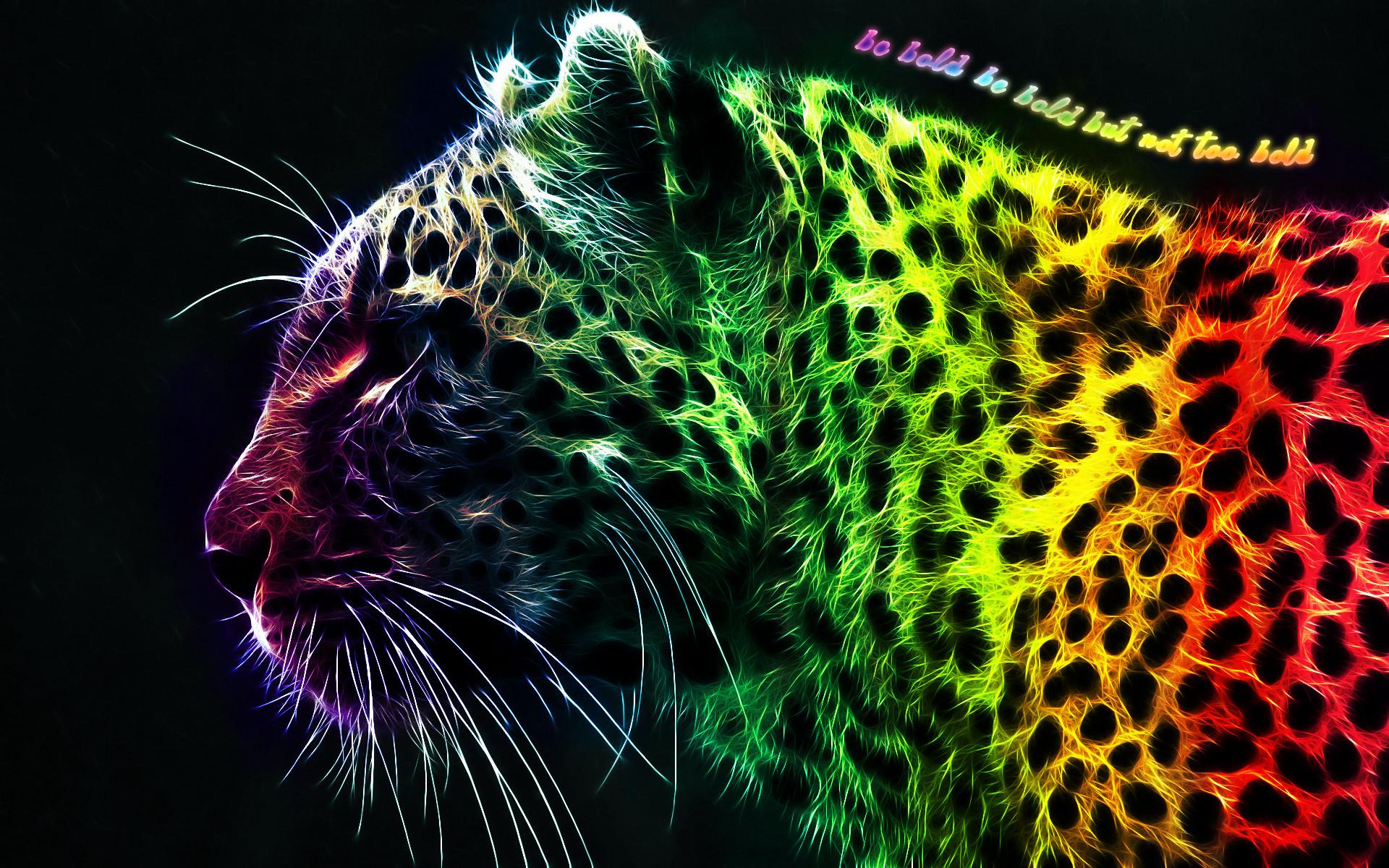 Rainbow Zebra Wallpaper 67 Images
